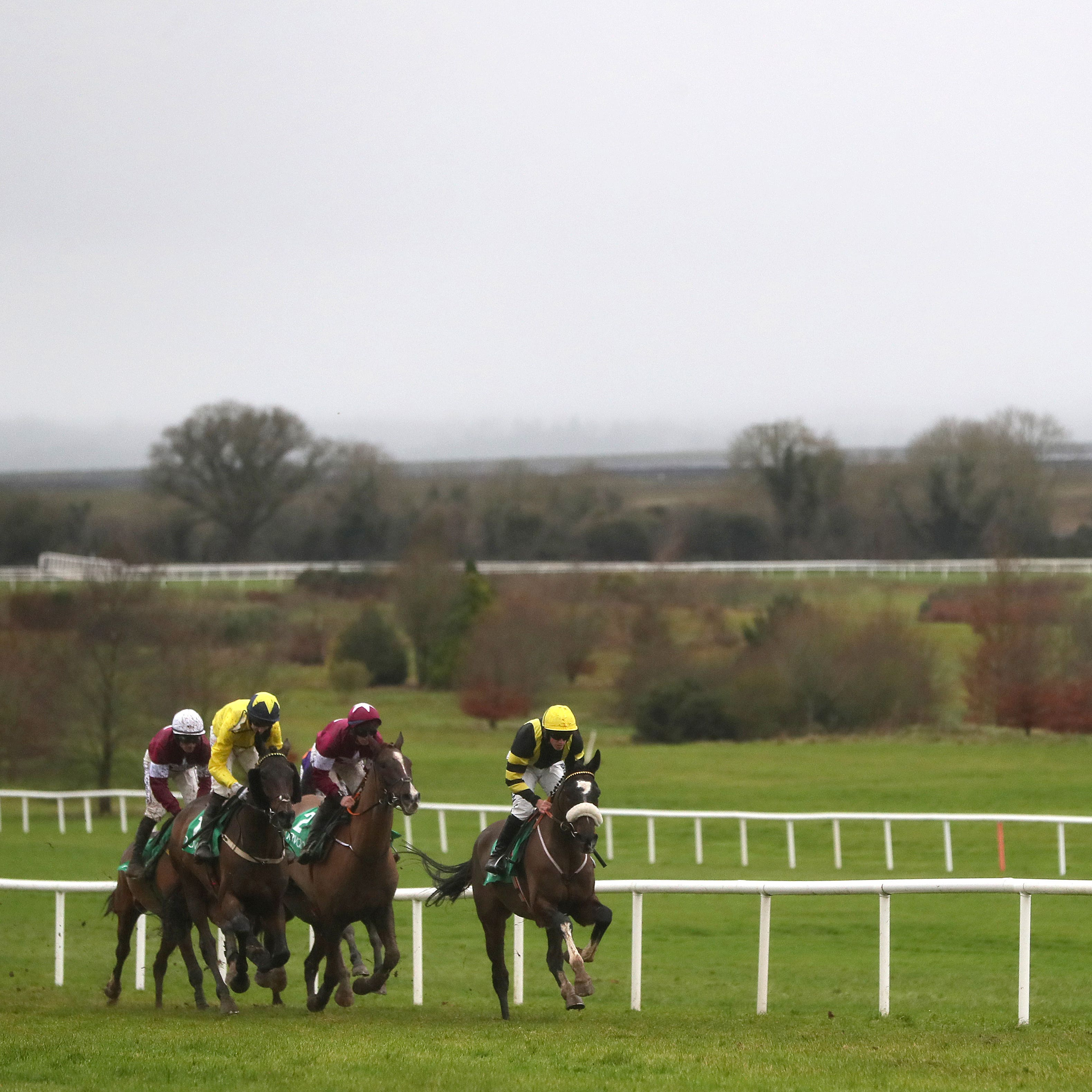 Racing at Navan