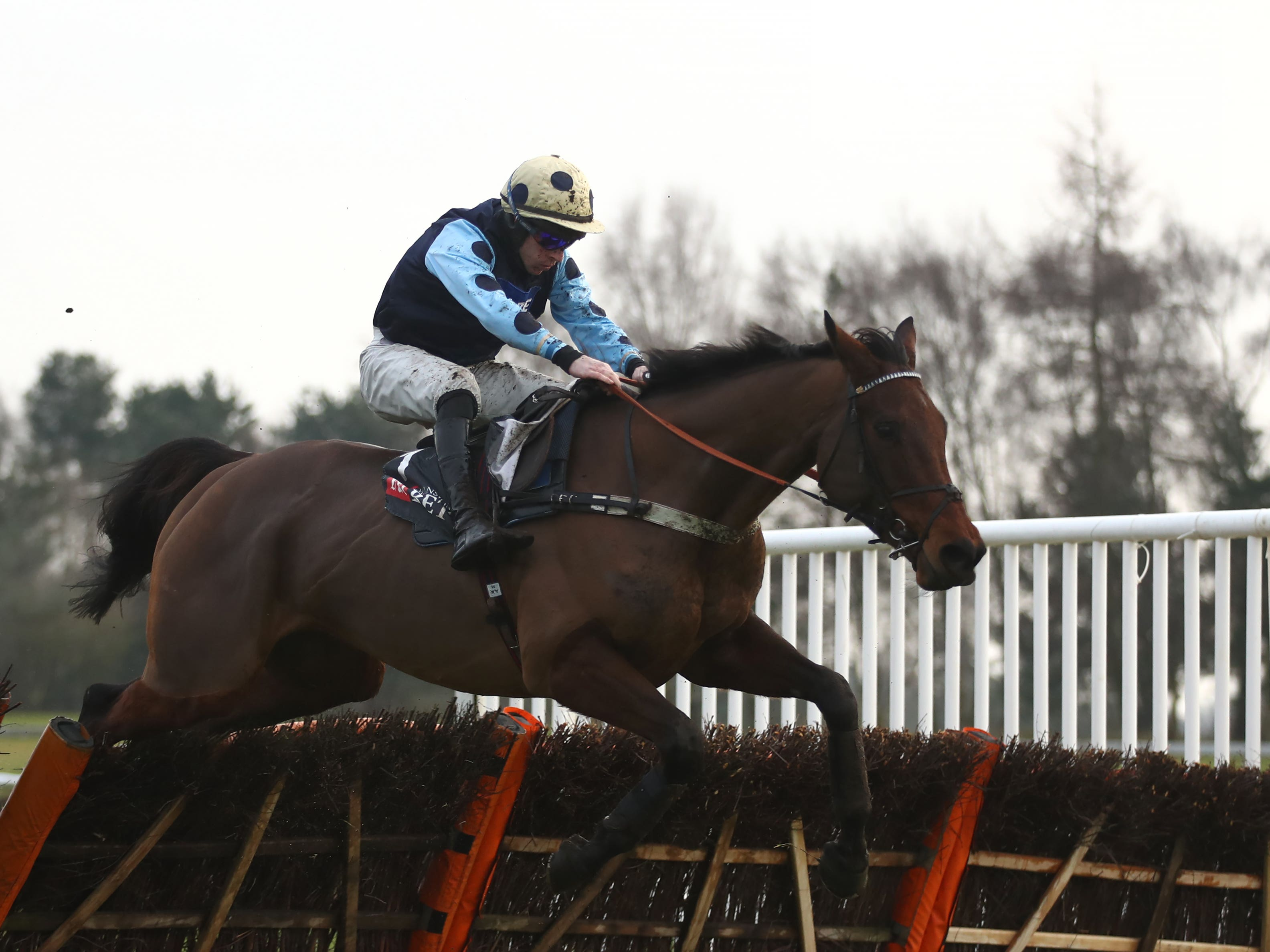 Edwardstone is set for the Betfair Hurdle after victory at Market Rasen (Tim Goode/PA)
