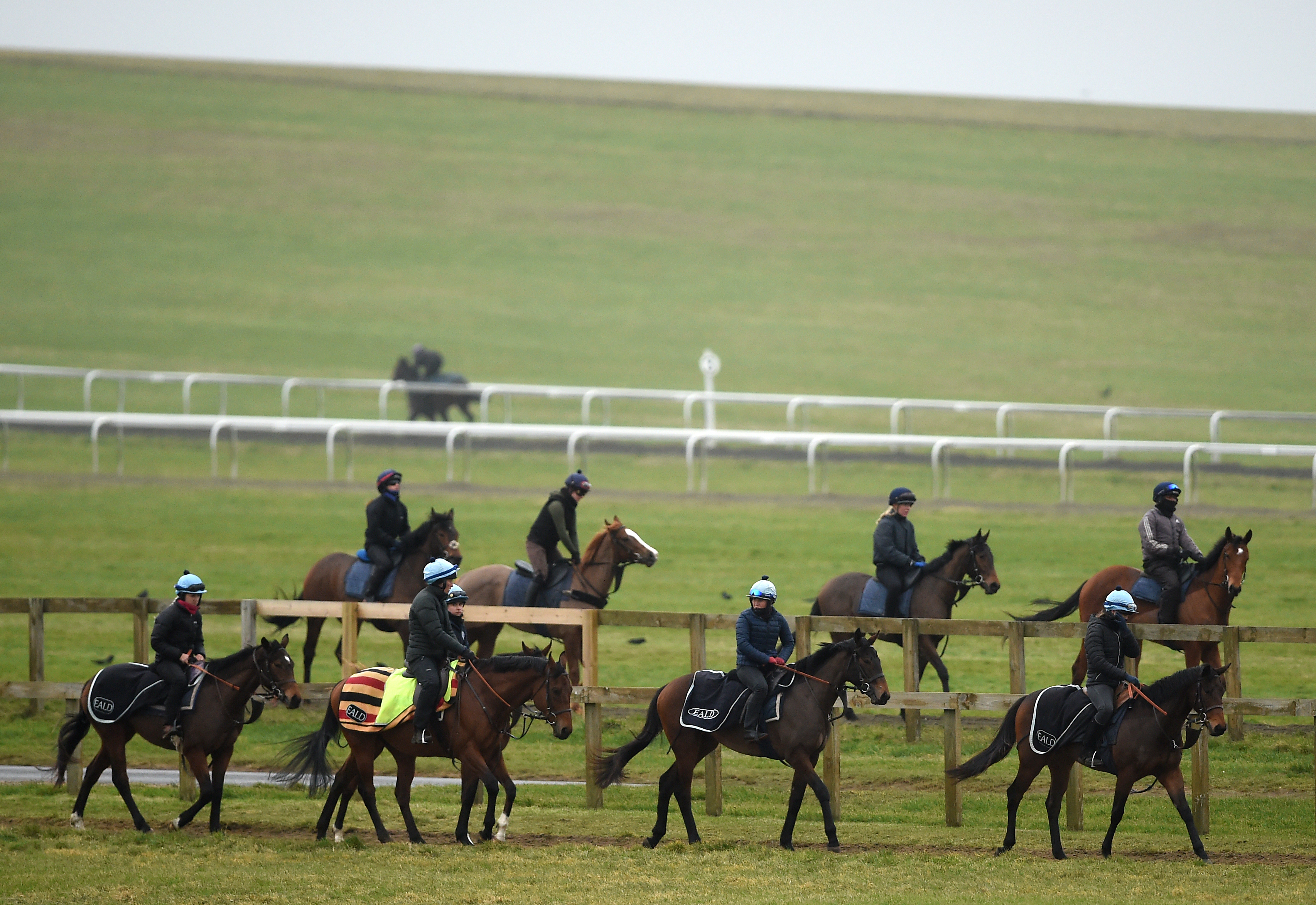 A number of Newmarket yards have been tested so far