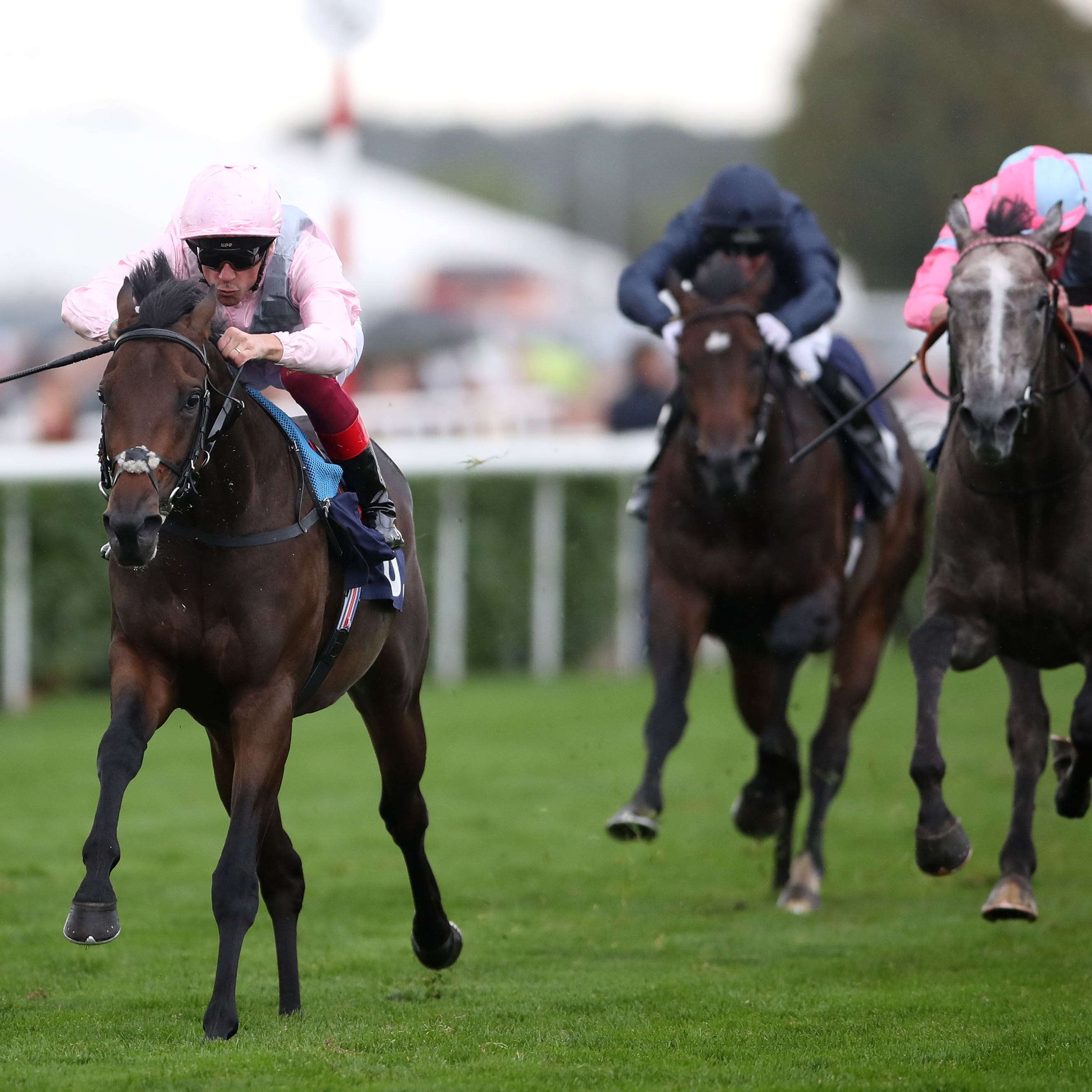 Too Darn Hot stretches clear in the Champagne Stakes at Doncaster