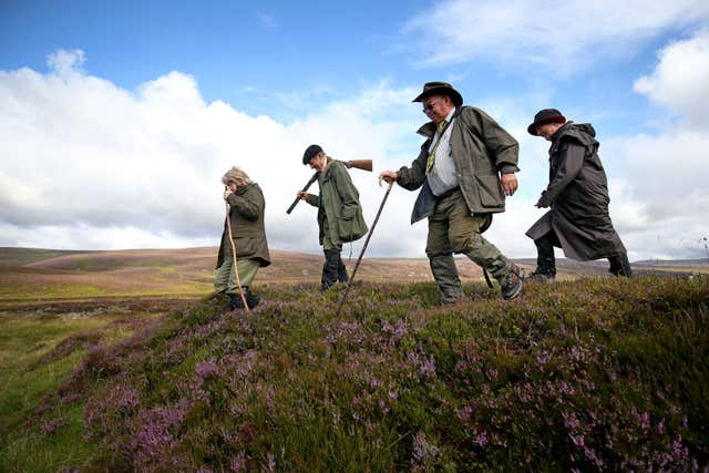 Grouse shooting party