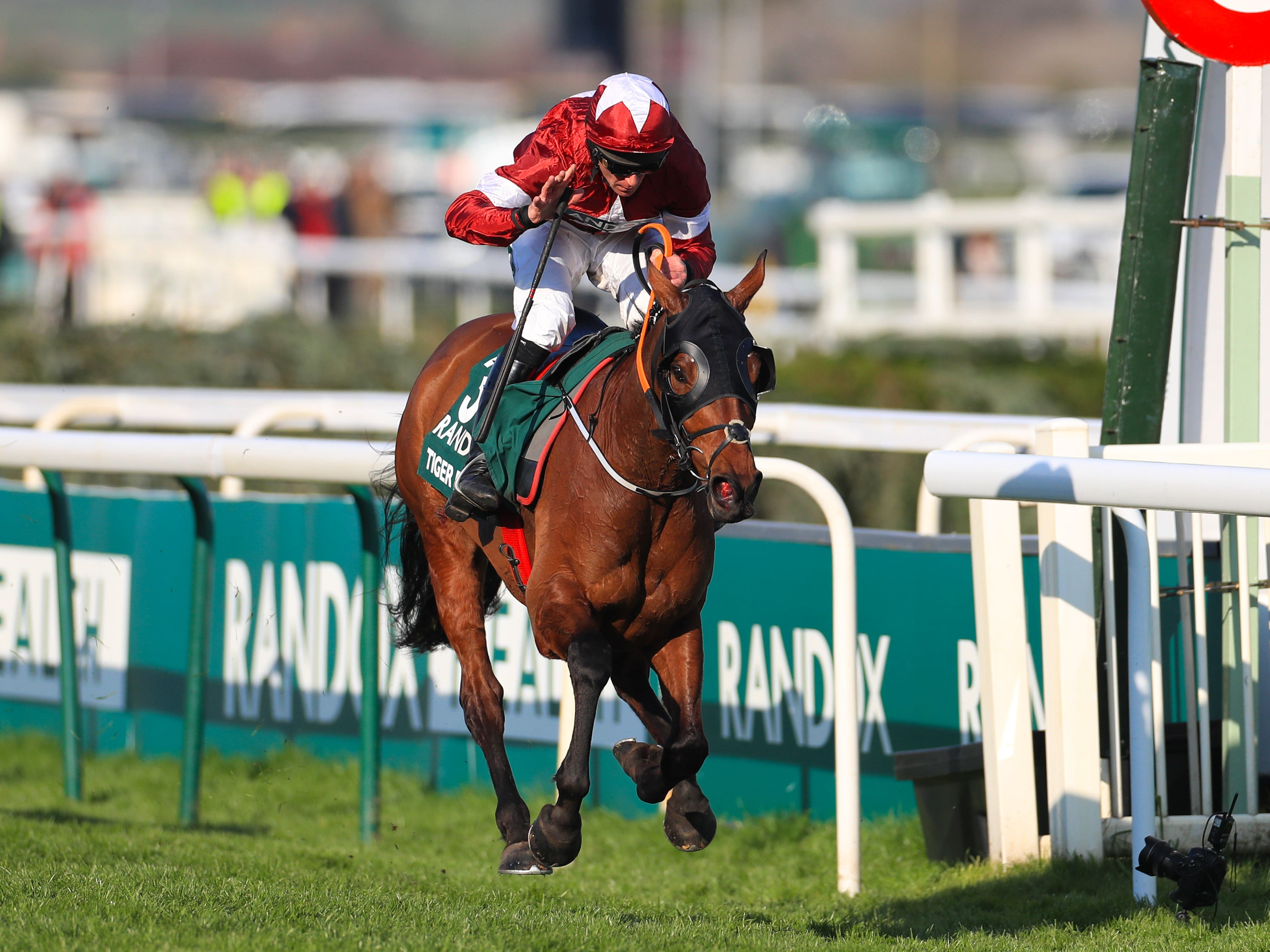 Tiger Roll on the way to victory at Aintree last year (Mike Egerton/PA)