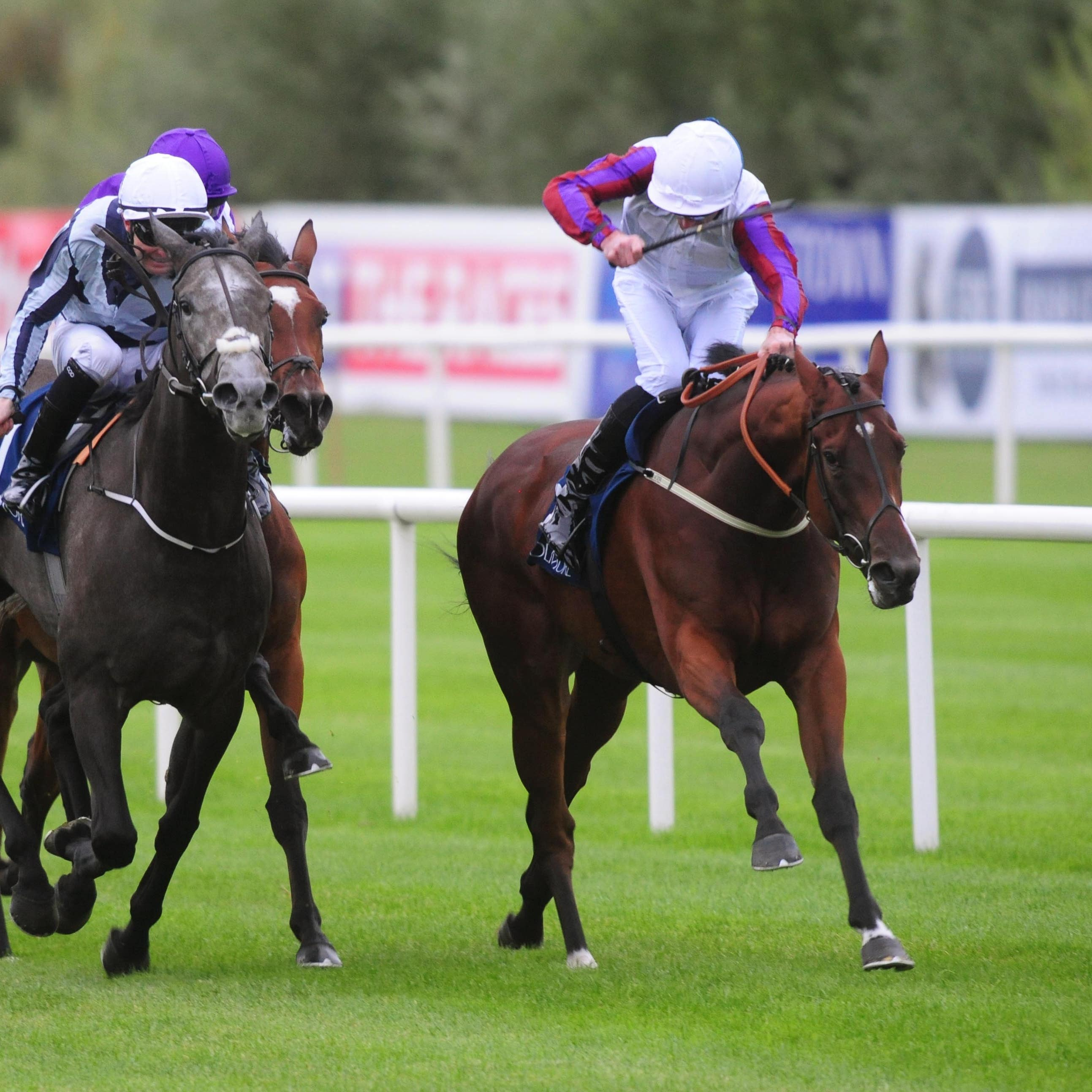 Laurens (right) saw off Alpha Centauri to win the Matron Stakes