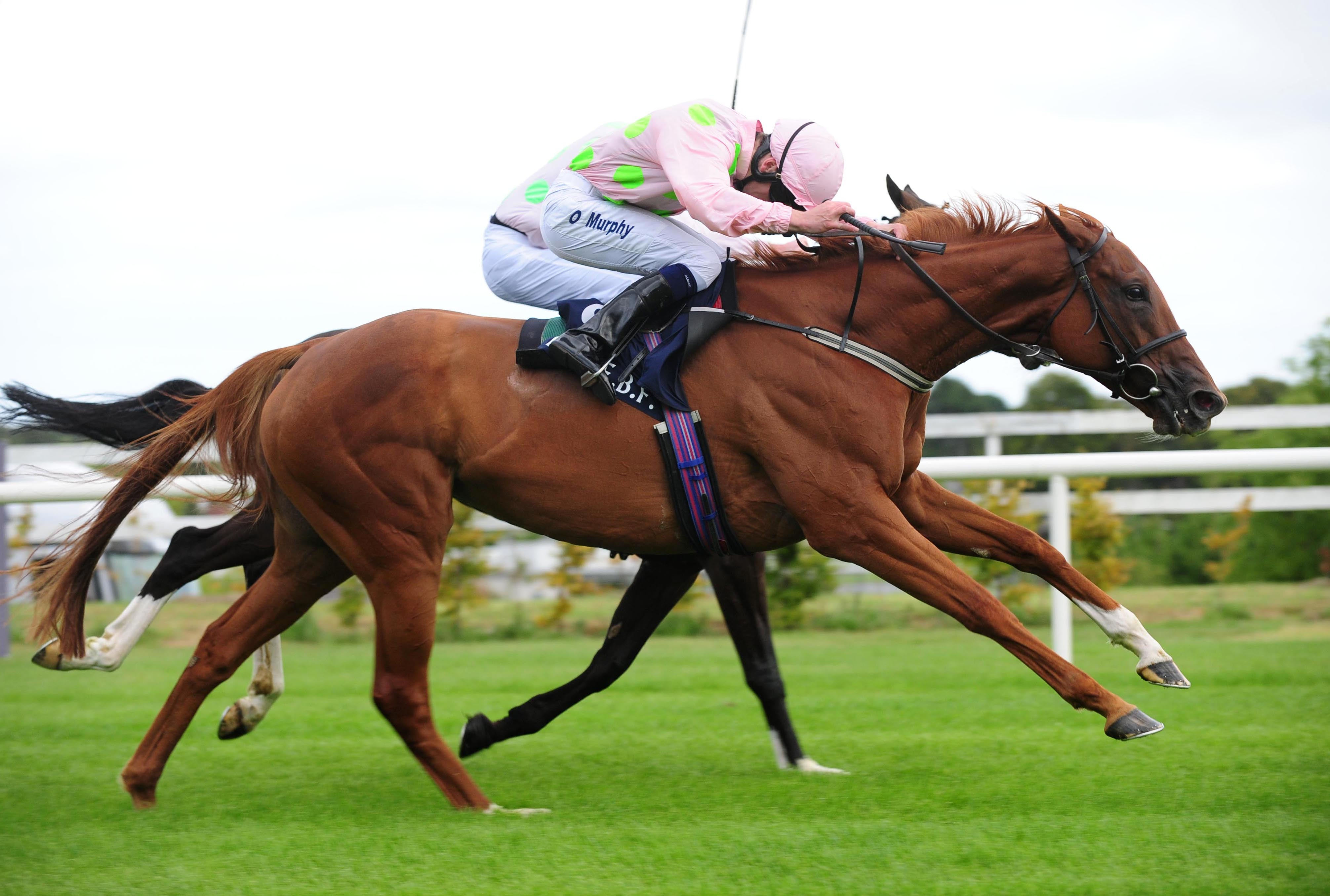 Limini in winning action at Leopardstown on Irish Champions Weekend