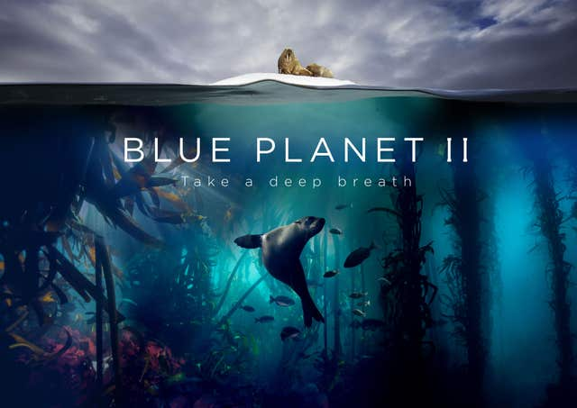 Blue Planet II was a hit for the BBC around the world