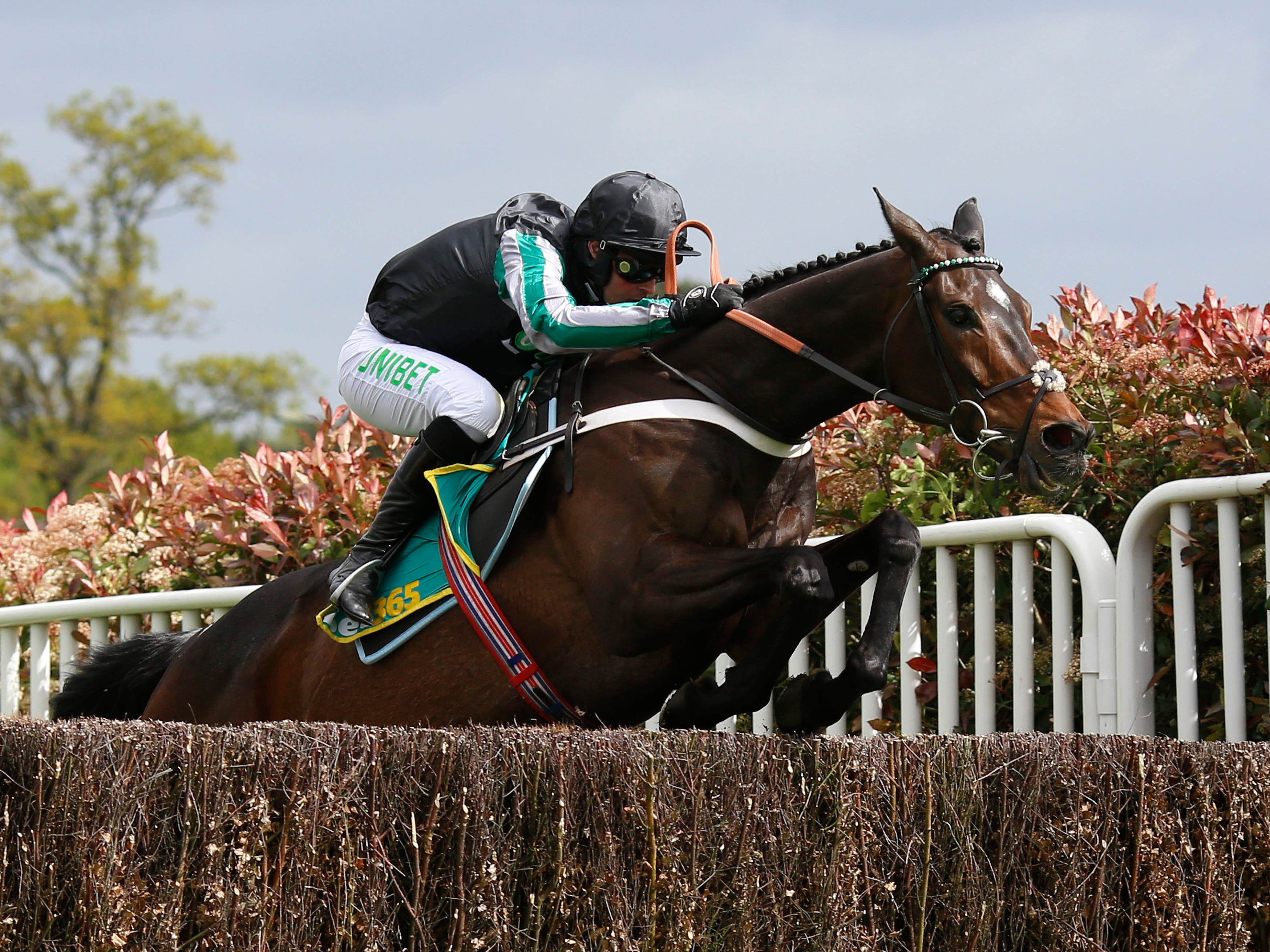 Altior in action at Sandown (Julian Herbert/PA)