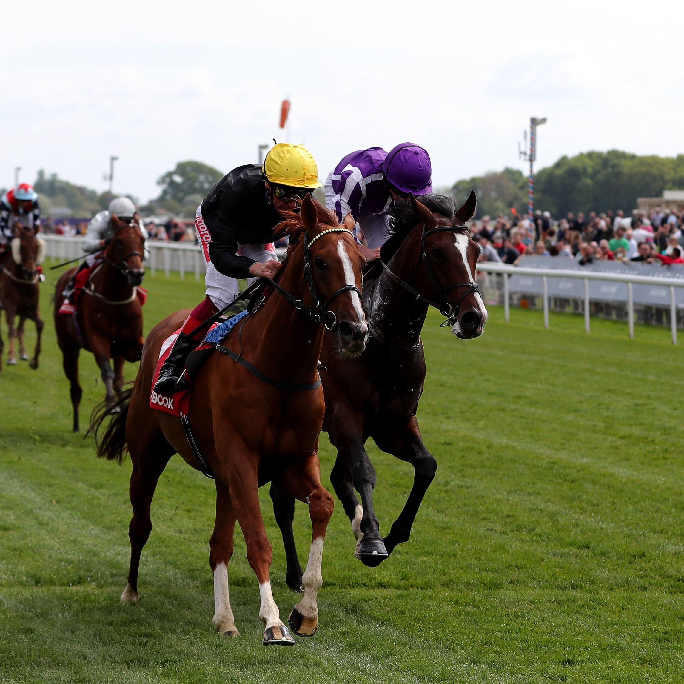 Southern France (far side) could drop down in trip at Ascot