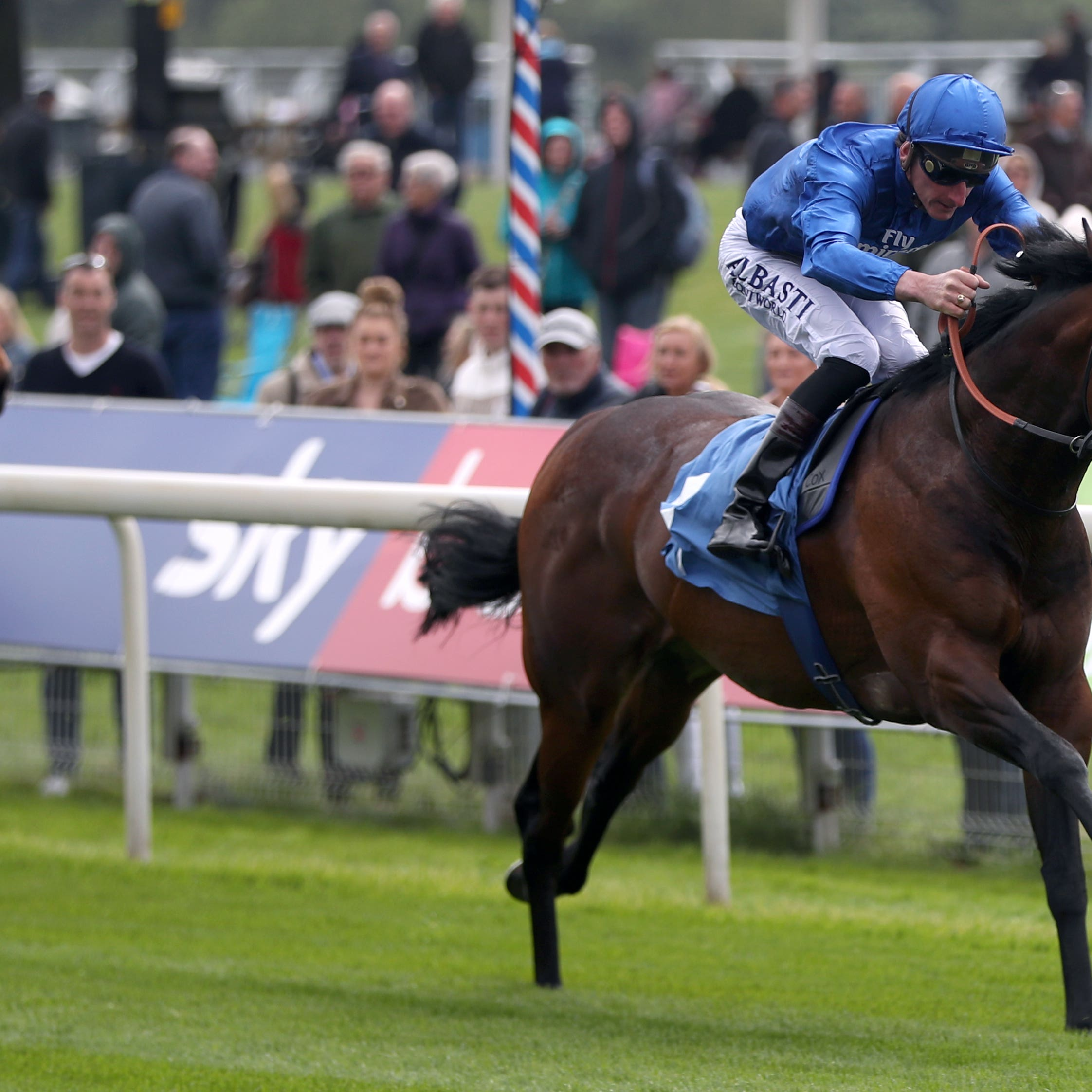 Harry Angel was an was winner at York on his return