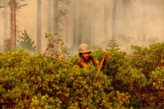 Firefighters have been tackling the blazes along the west coast