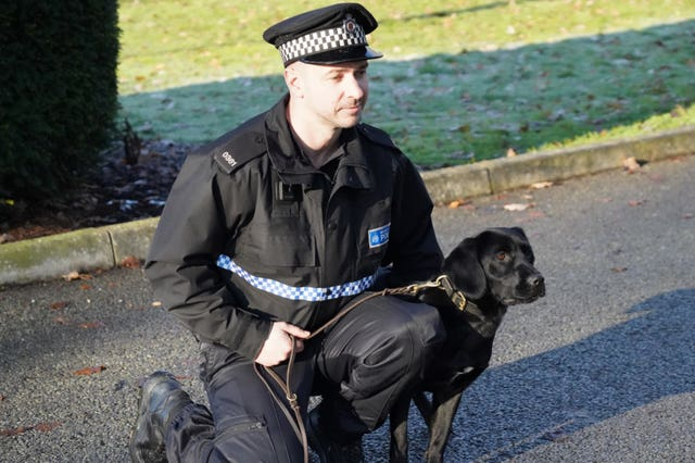 BTP introduces drug detection dogs