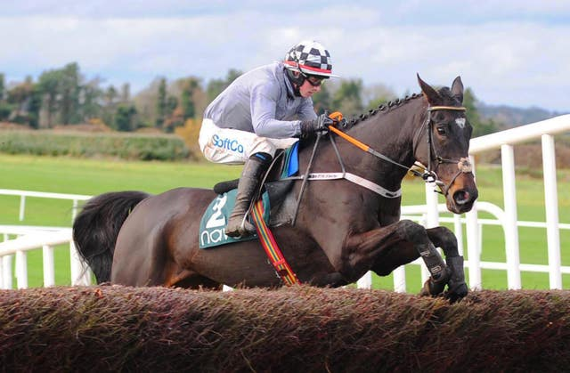 Castlegrace Paddy impressed in the Fortria Chase