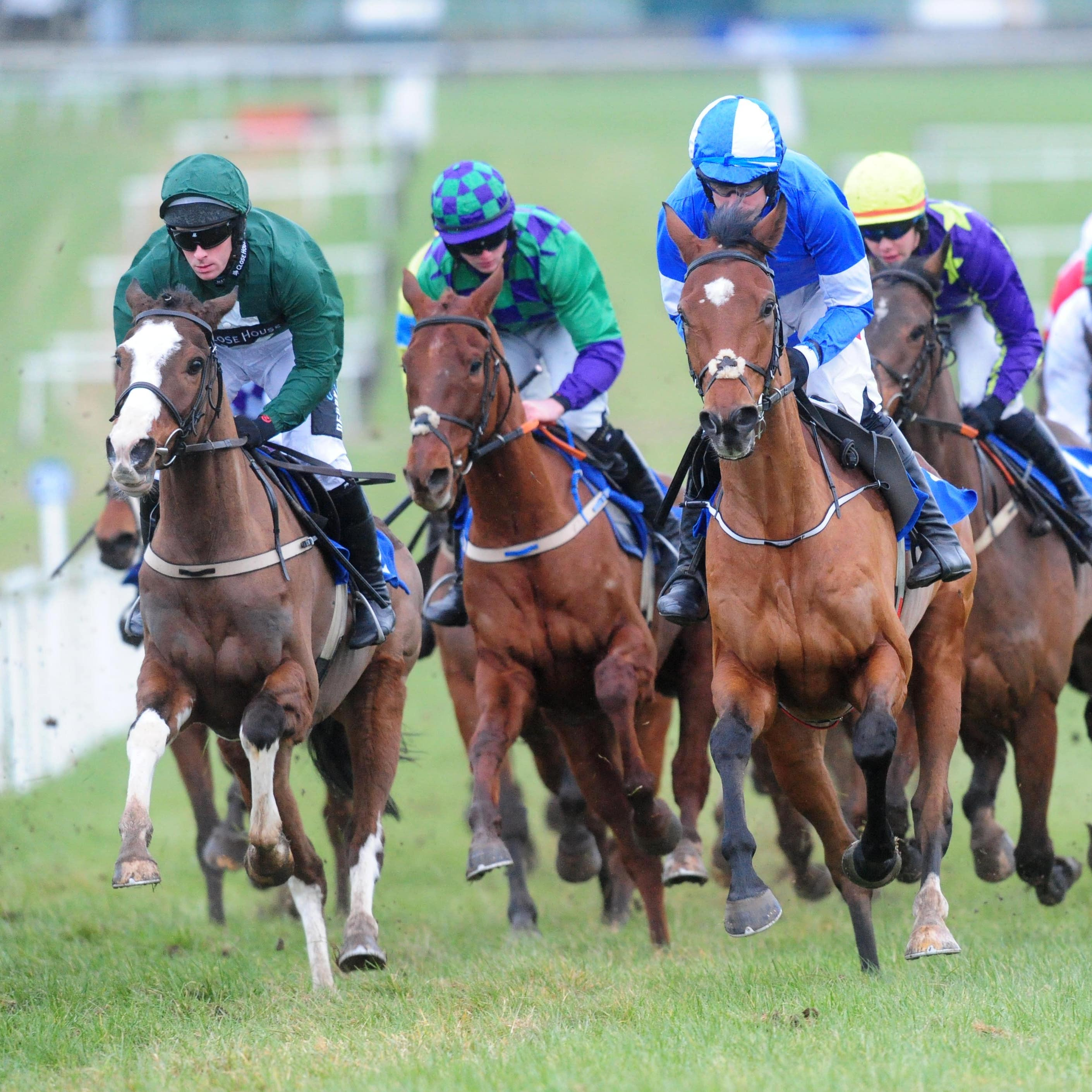 Racing is set to continue in Ireland, with fresh guidelines for trainers