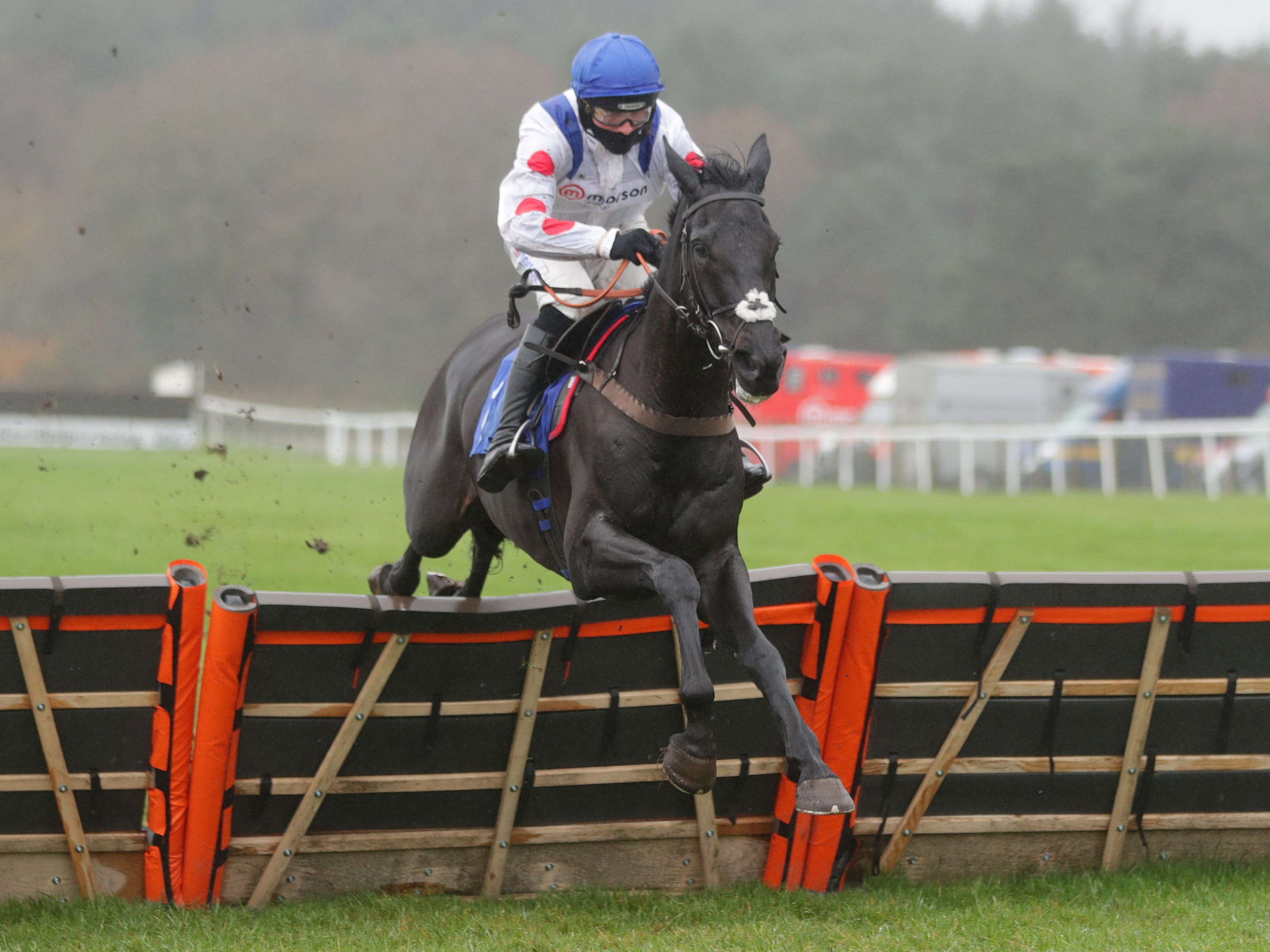 Monmiral will not run in the Triumph Hurdle (David Davies/PA)