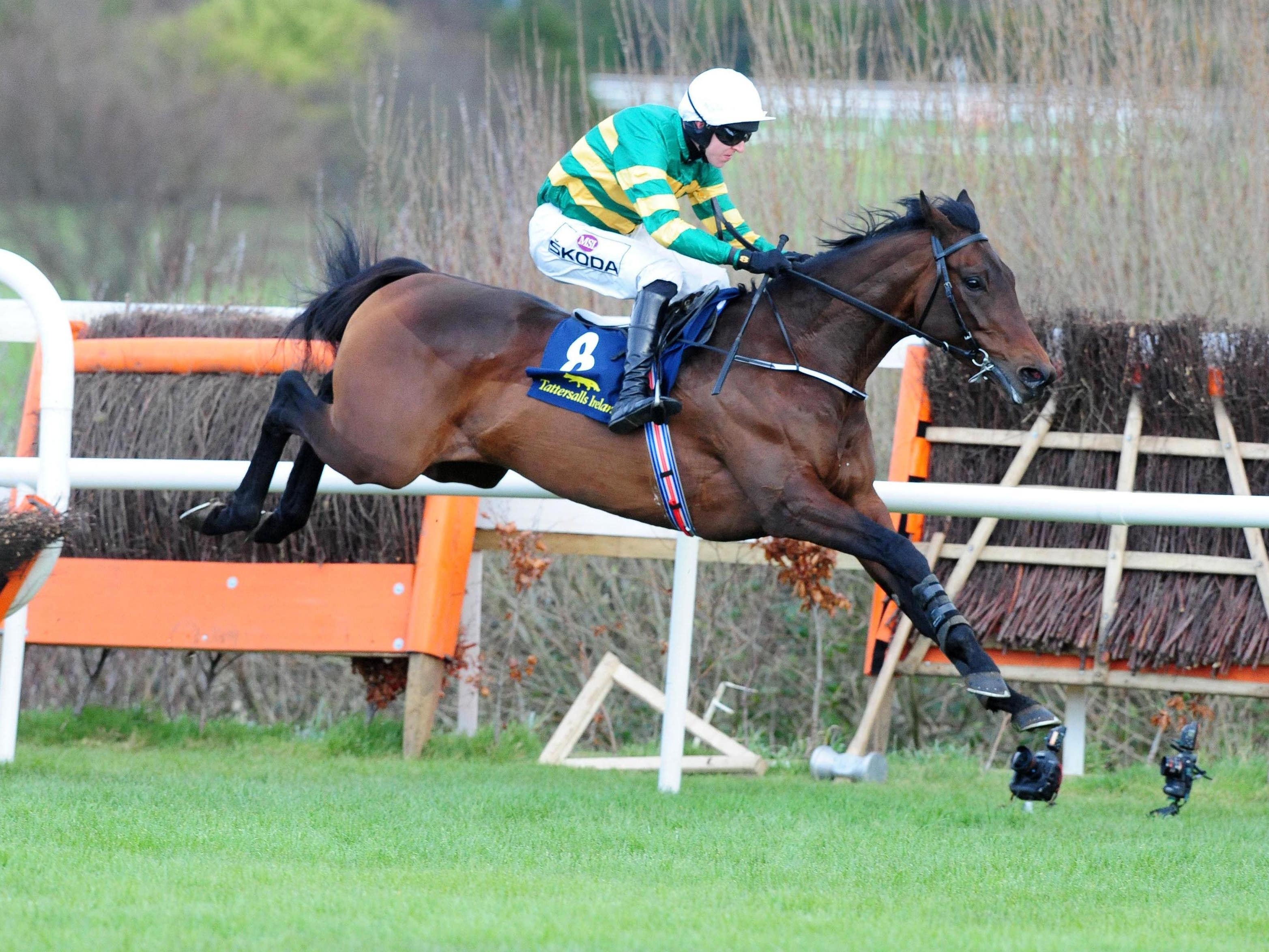 Sir Erec skips clear to win at Leopardstown last month (PA)