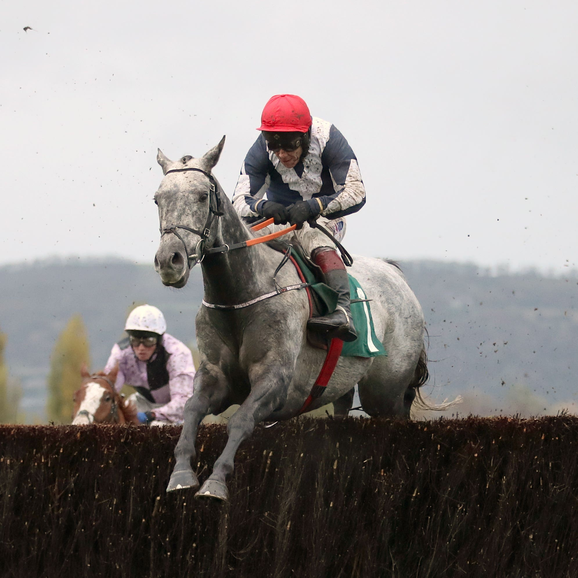 Cubomania on his way to winning at Cheltenham