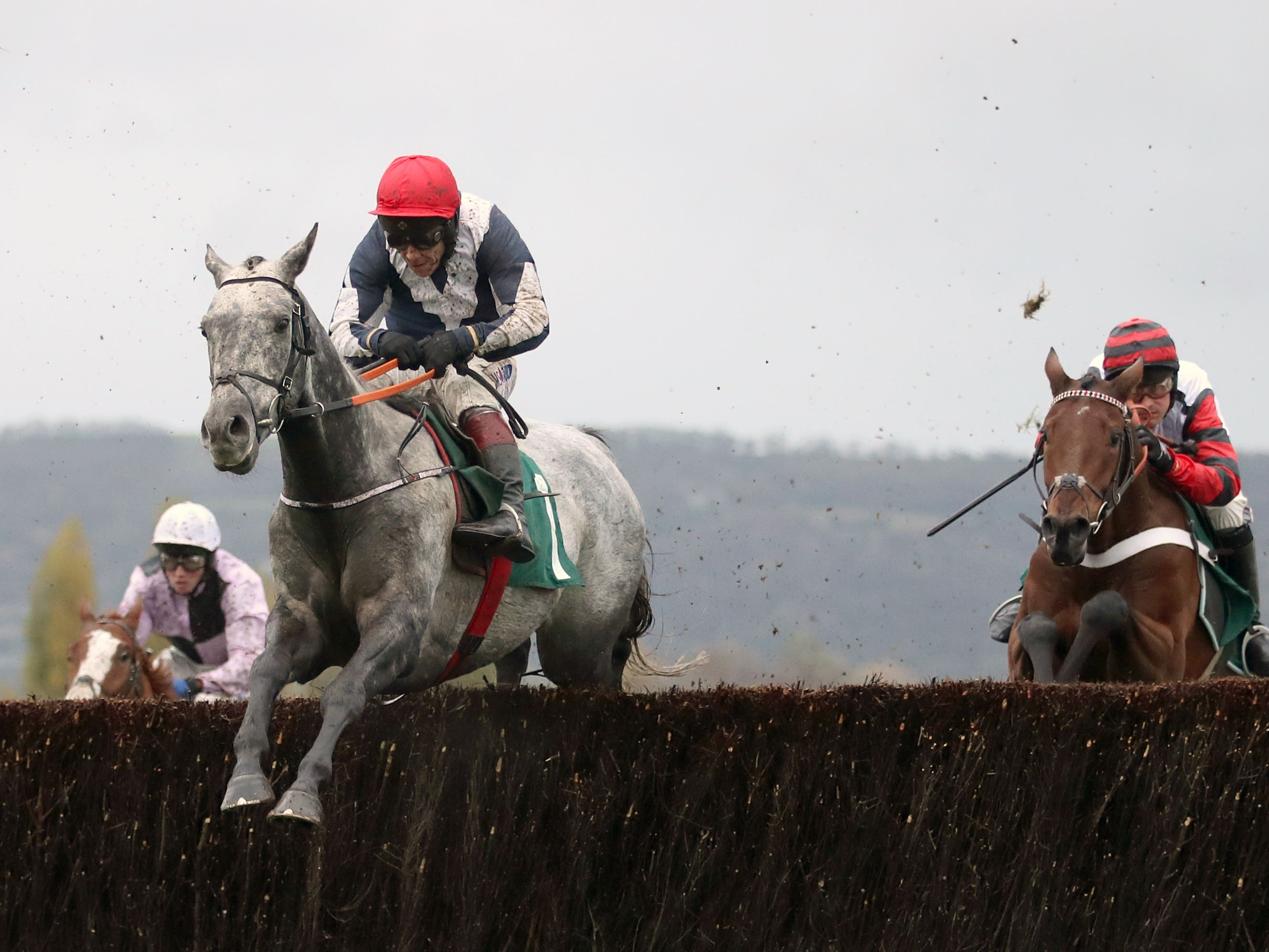 Cubomania on his way to winning at Cheltenham (Tim Goode/PA)