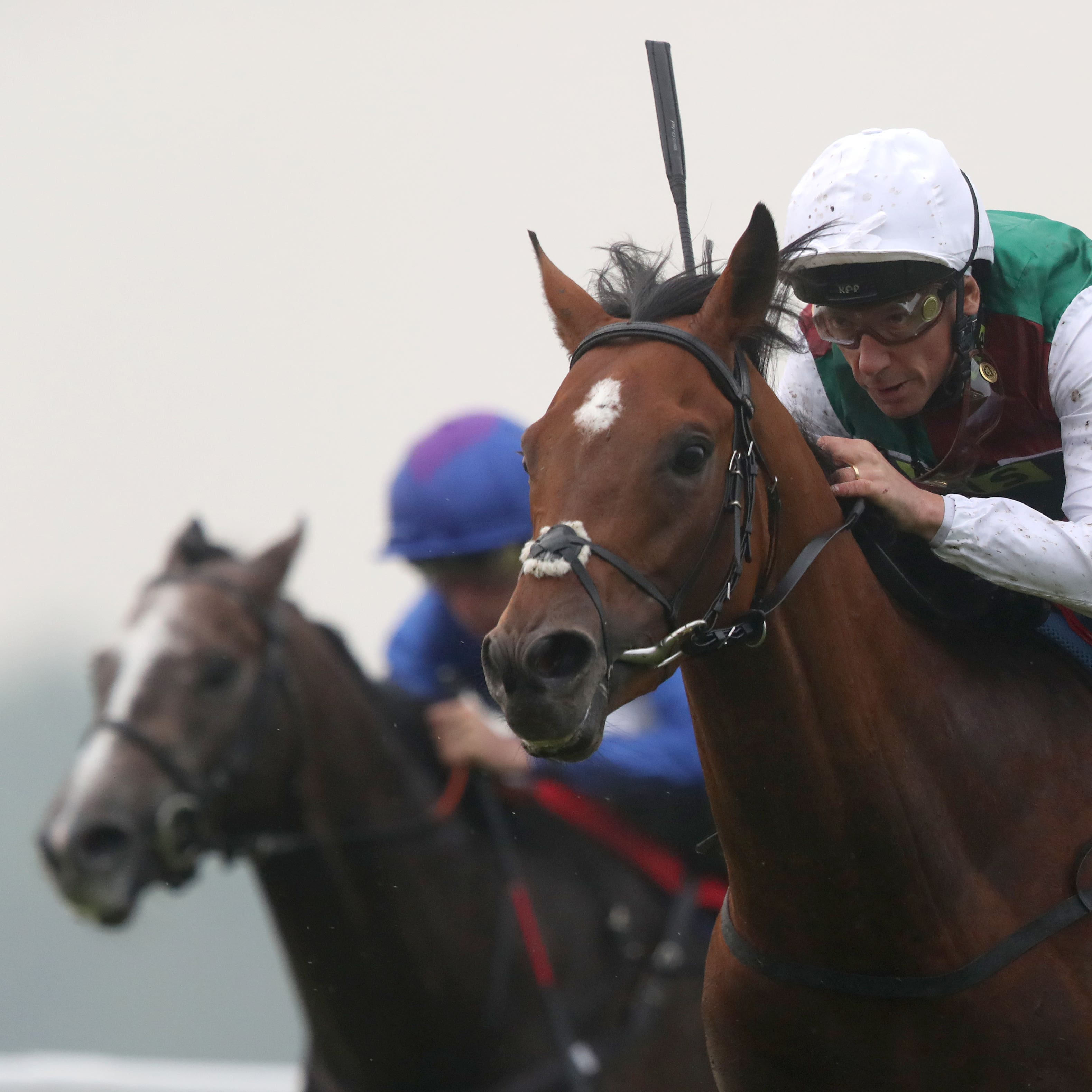 Without Parole (right) lands the Heron Stakes at Sandown
