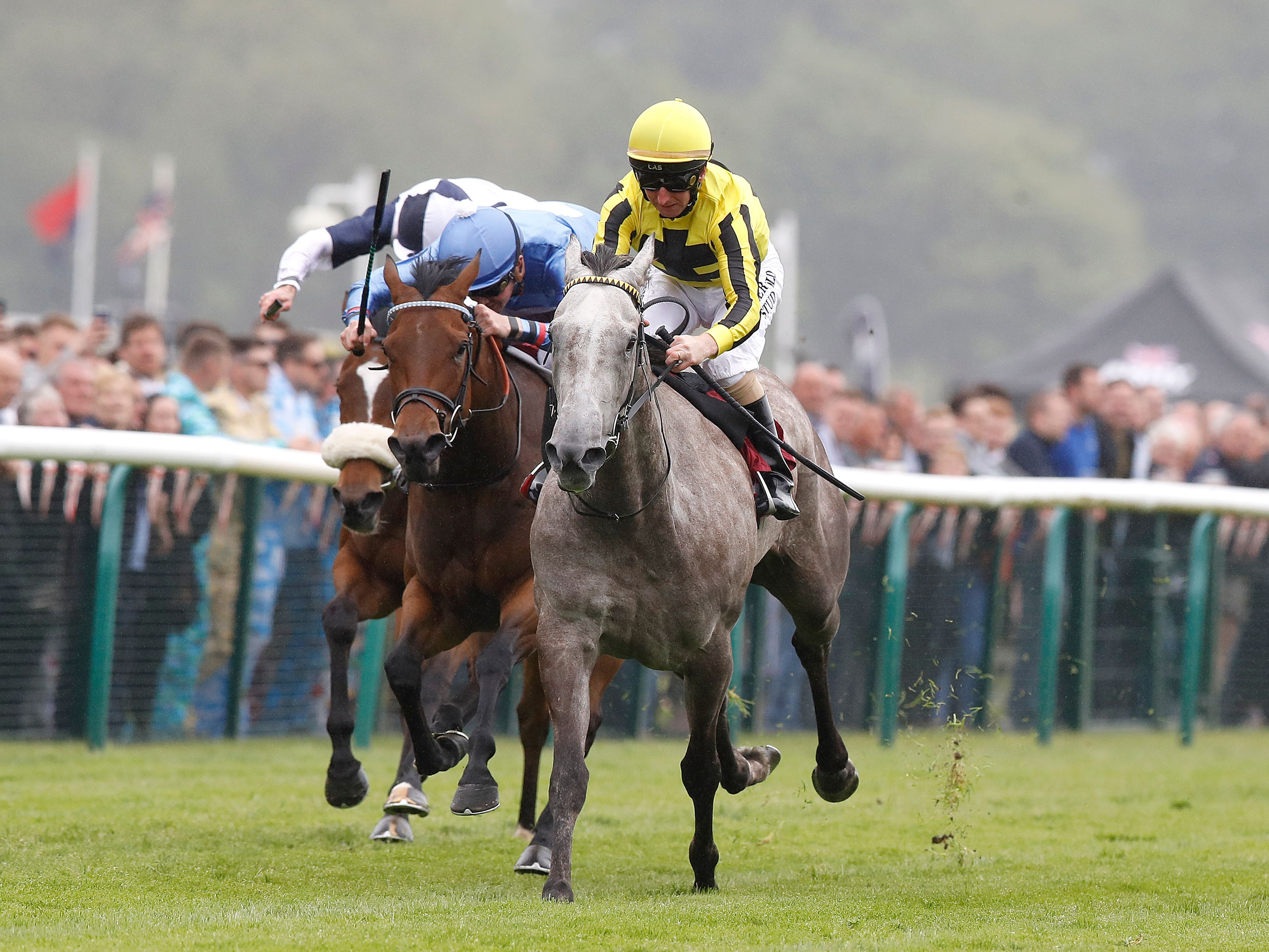 Forever in Dreams (right), ridden by Martin Dwyer, wins The EBF British Stallion Studs Cecil Frail at Haydock (Martin Rickett/PA)