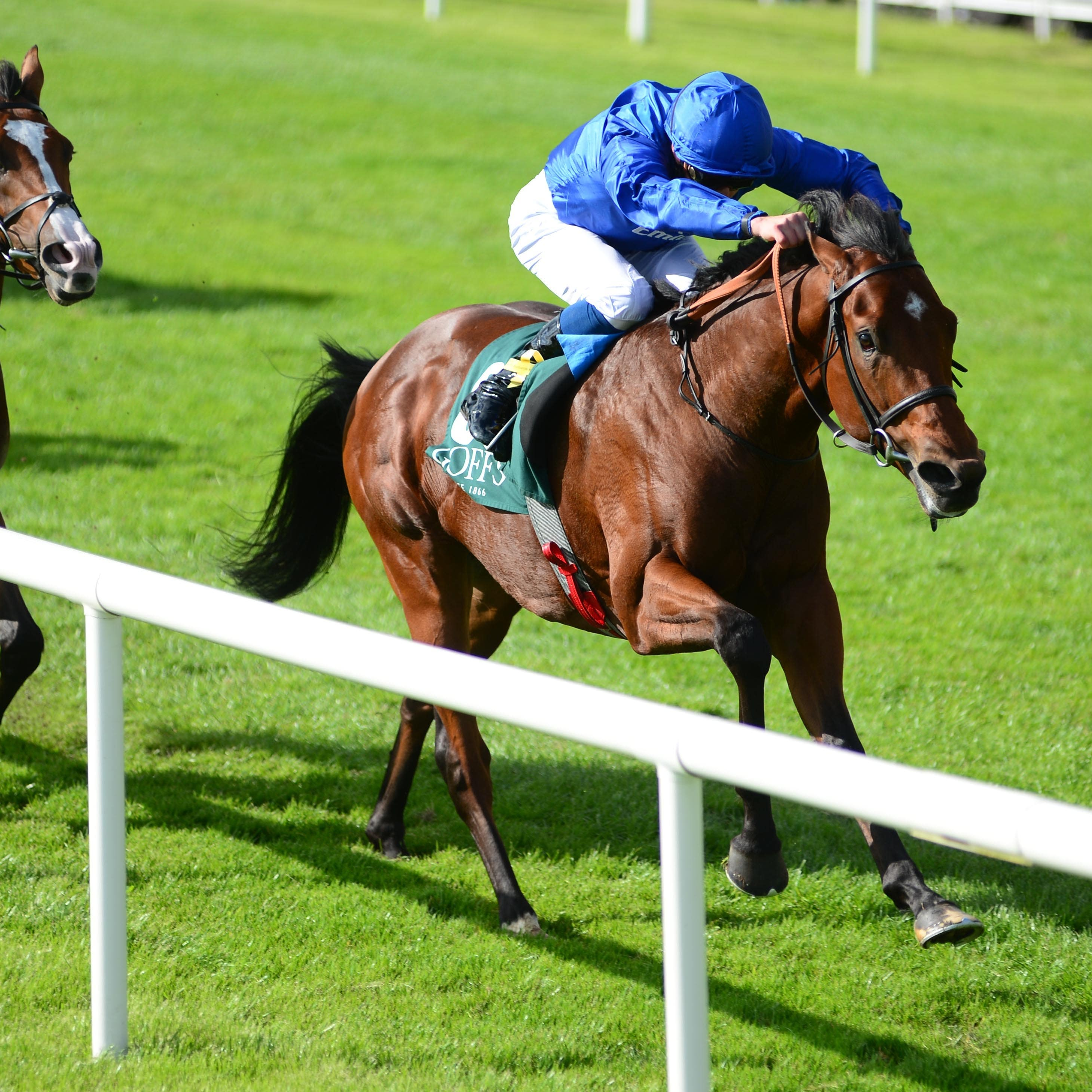 Quorto maintained his unbeaten record in the National Stakes