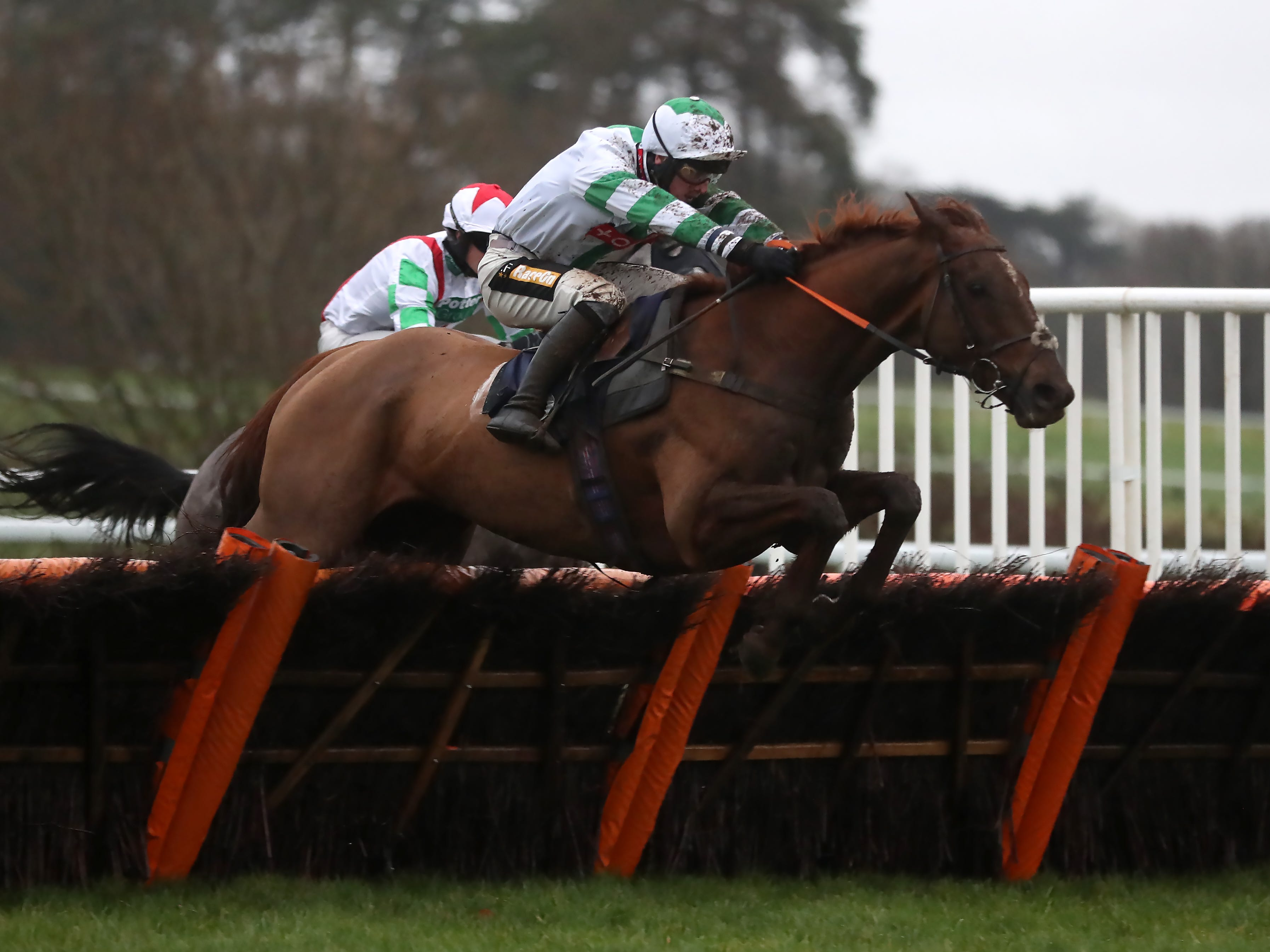 Nightboattoclyro may have to wait for Aintree for his next race (David Davies/PA)