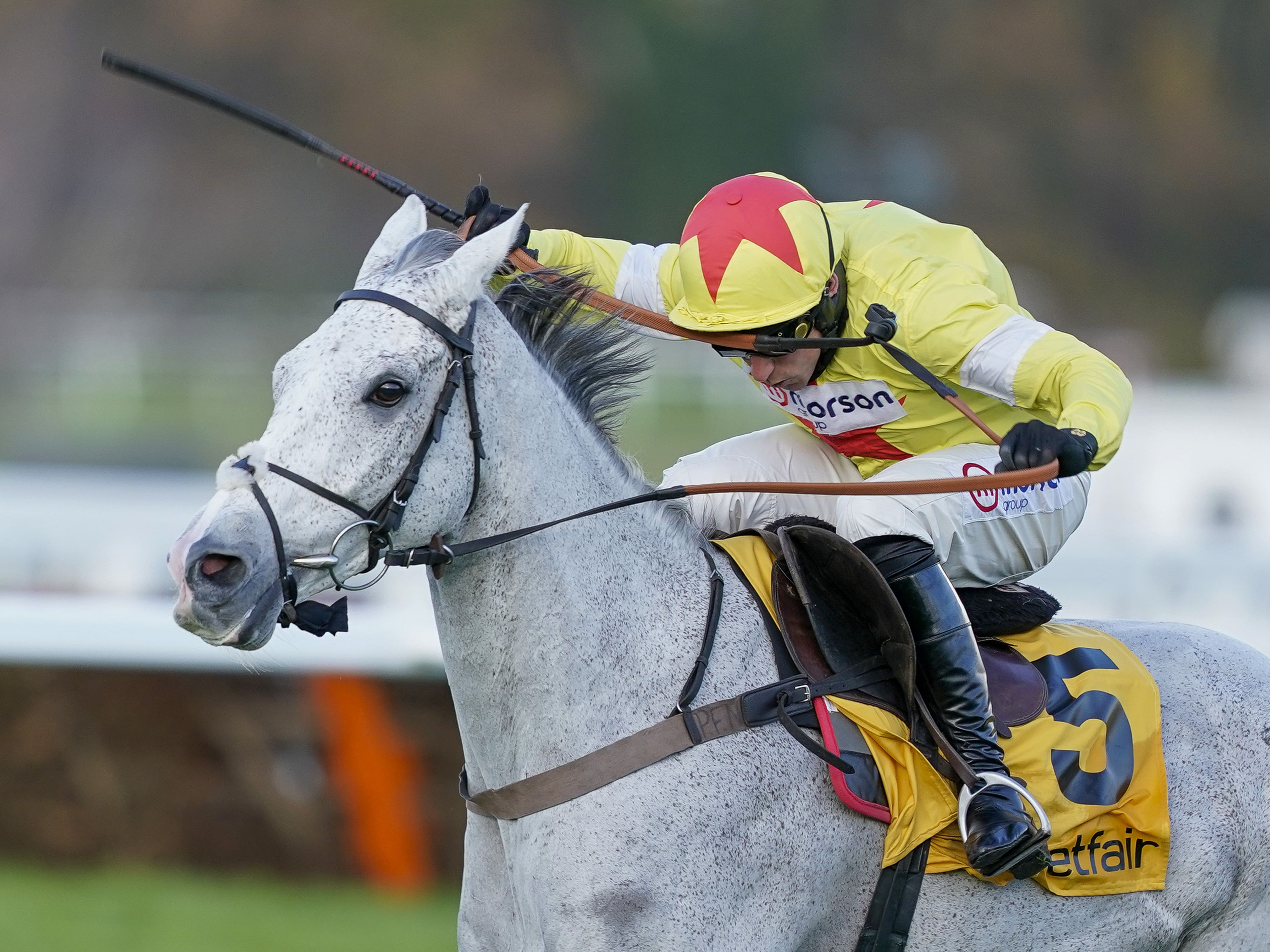 Politologue is a hot favourite for the Clarence House Chase (Alan Crowhurst/PA)
