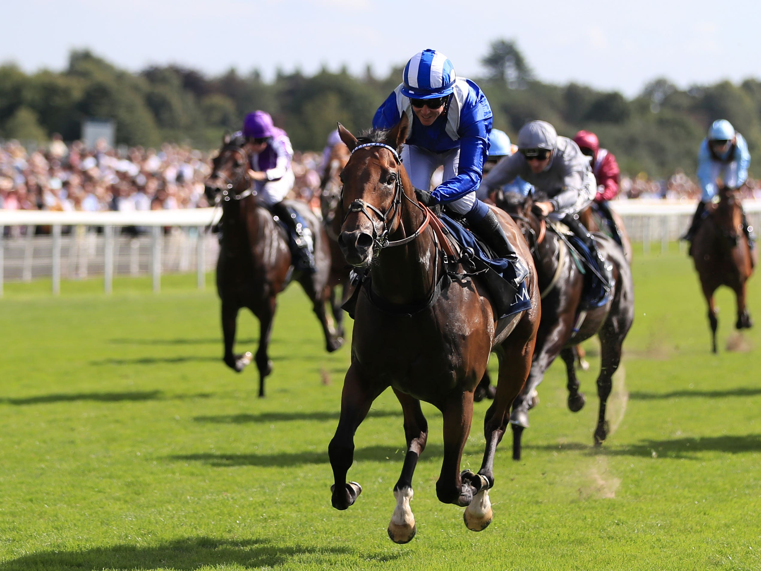 Battaash is likely to be given a break after a disappointing run in the Prix de l'Abbaye (Simon Cooper/PA)