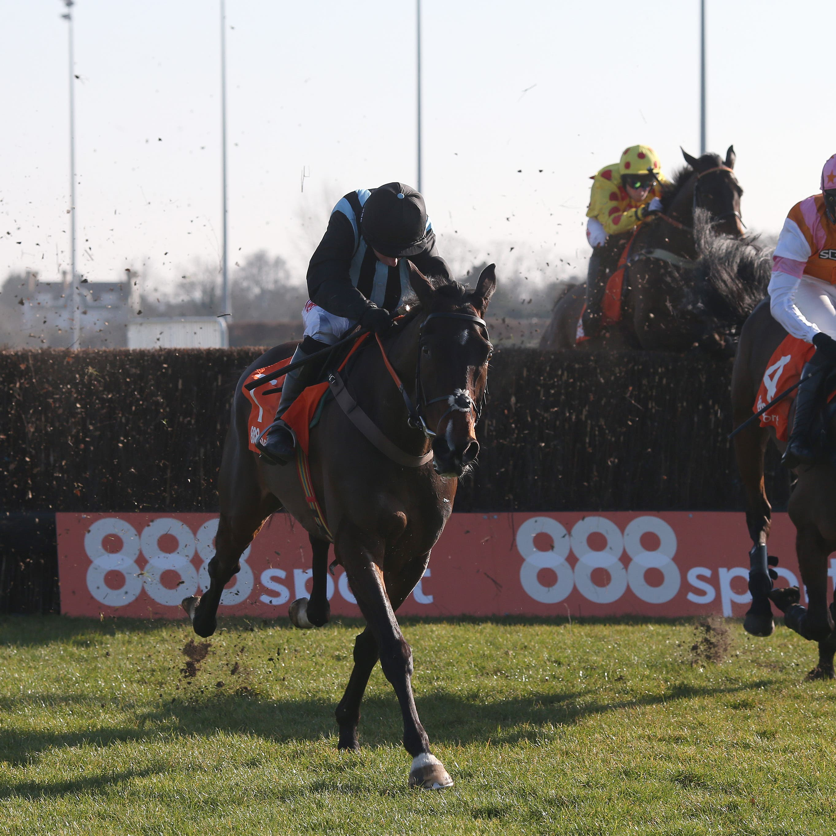 Bags Grove and Noel Fehily clear the last at Kempton