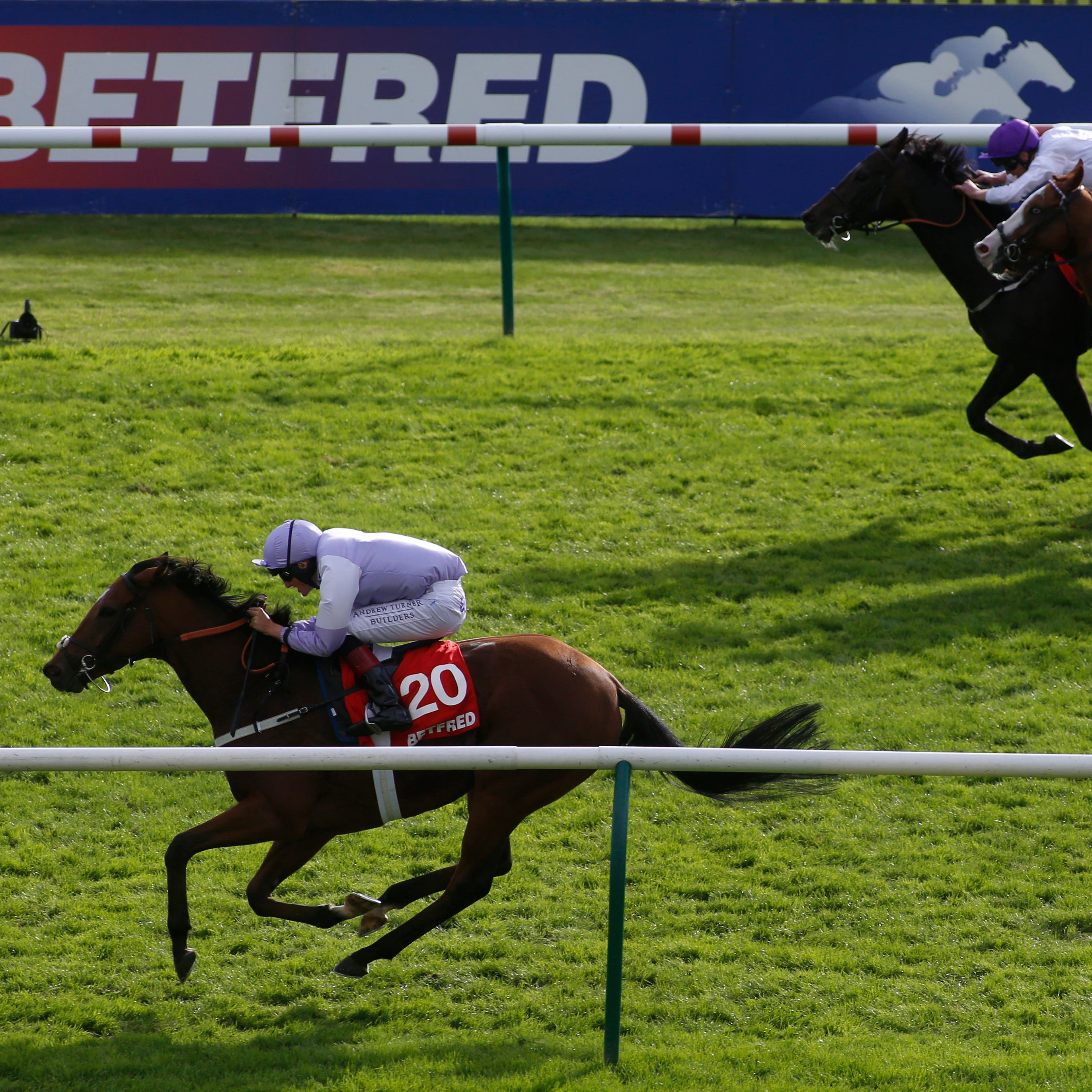 Dolphin Vista (left) gets up to win the Cambridgeshire Handicap at Newmarket