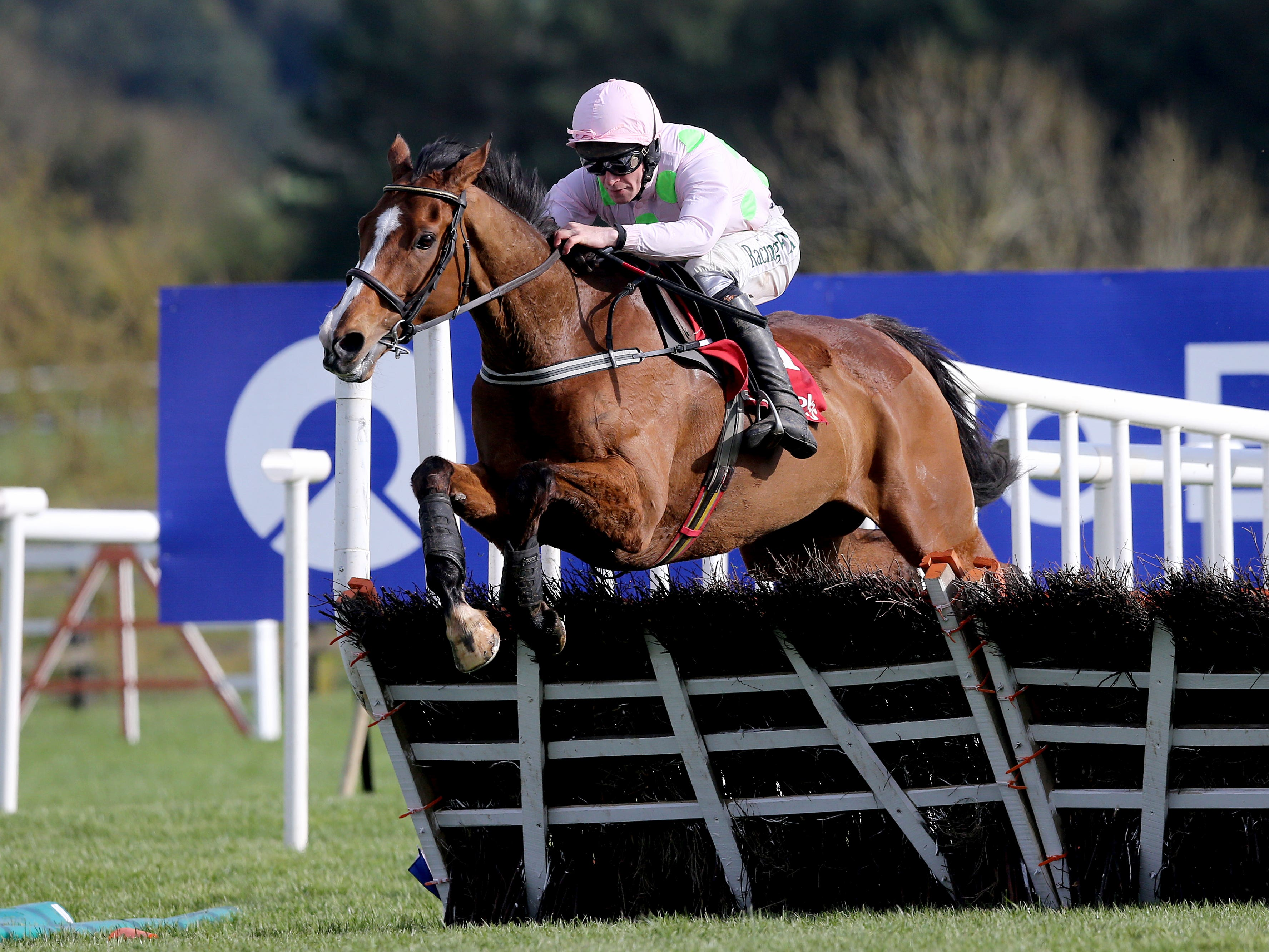 Faugheen was spectacular at Punchestown last year (Brian Lawless/PA)