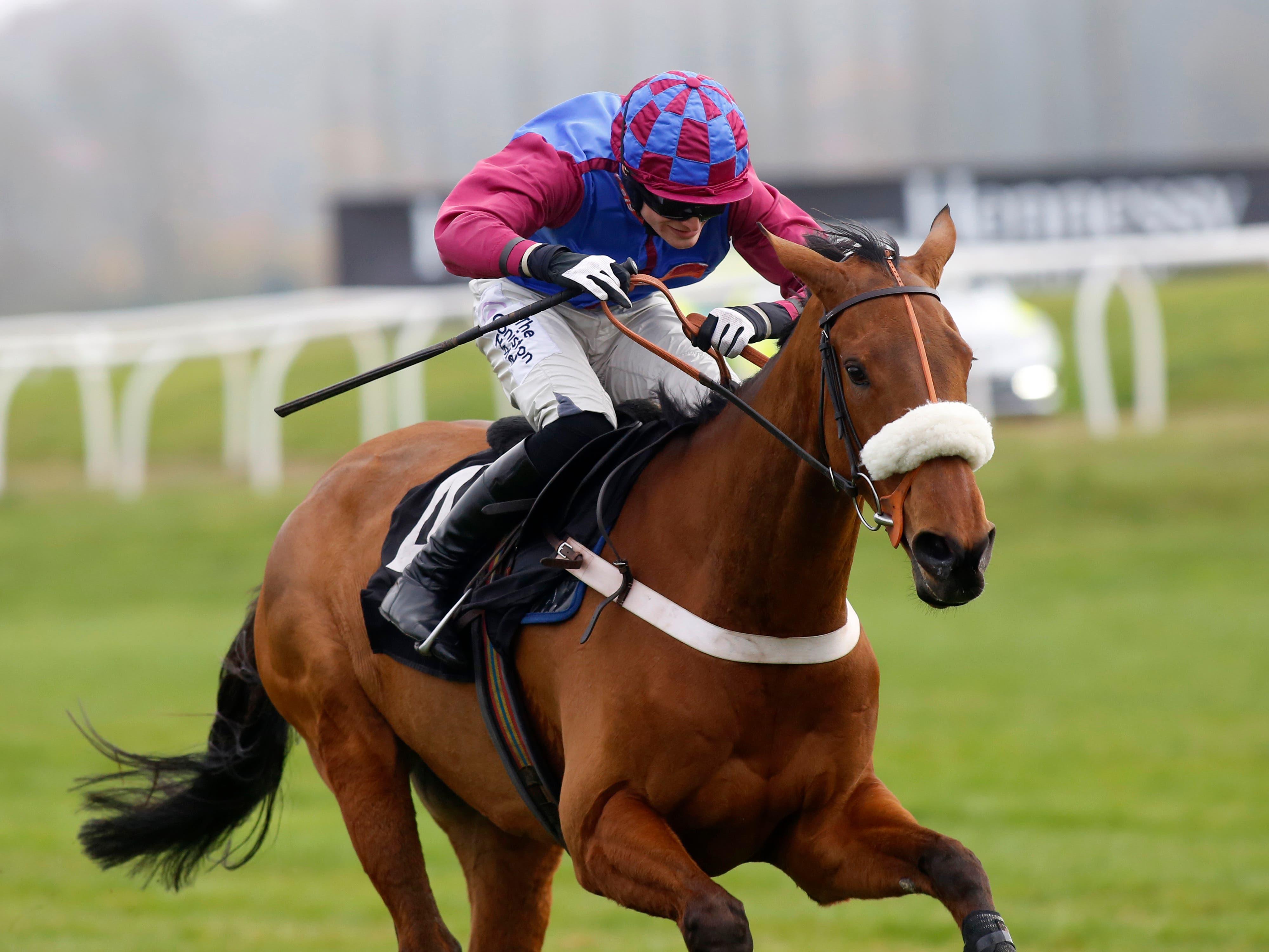 La Bague Au Roi made a successful debut over fences at Newbury (Julian Herbert/PA)