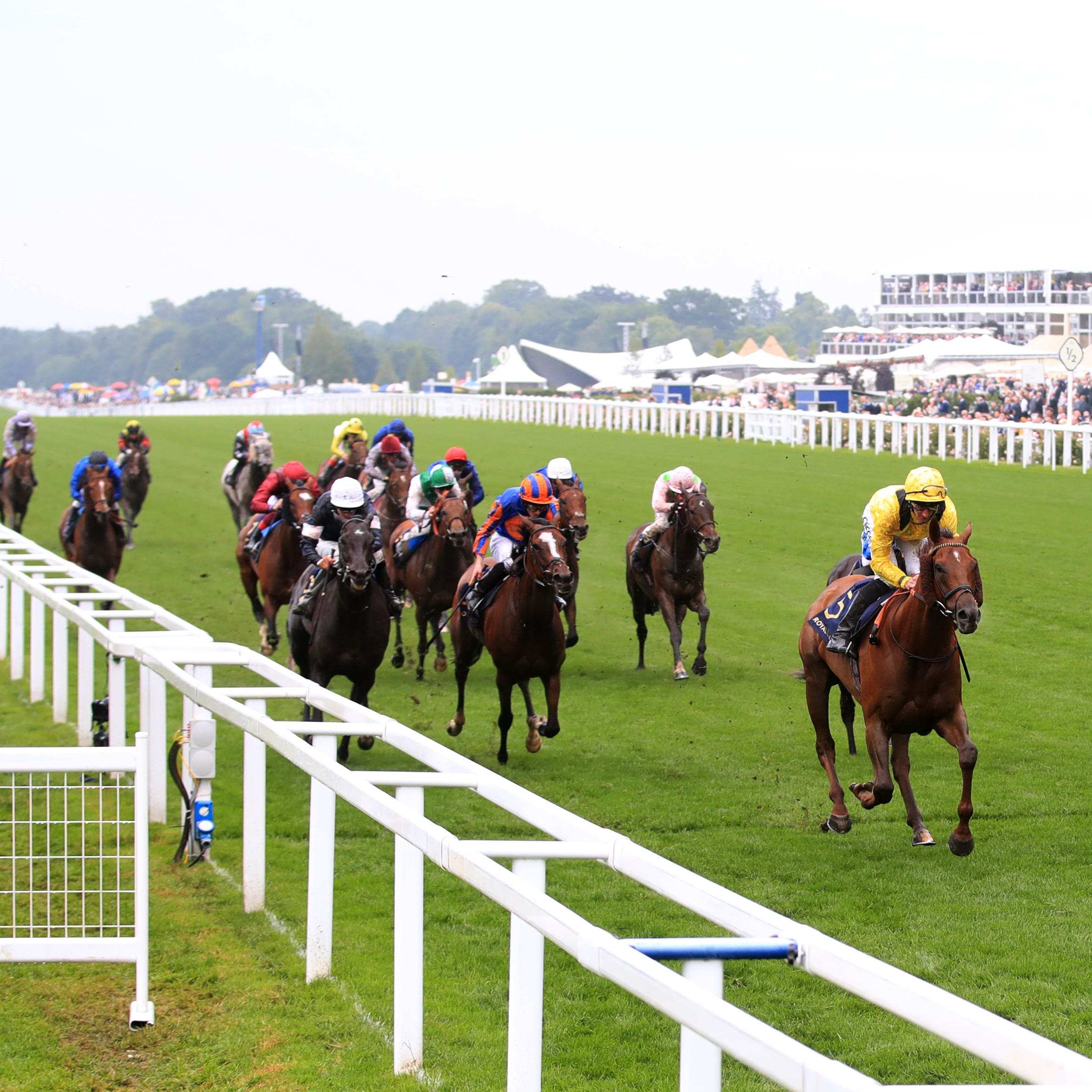Addeybb comes home clear in the Wolferton