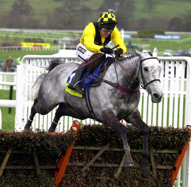 Champion Hurdle hero Rooster Booster and Johnson