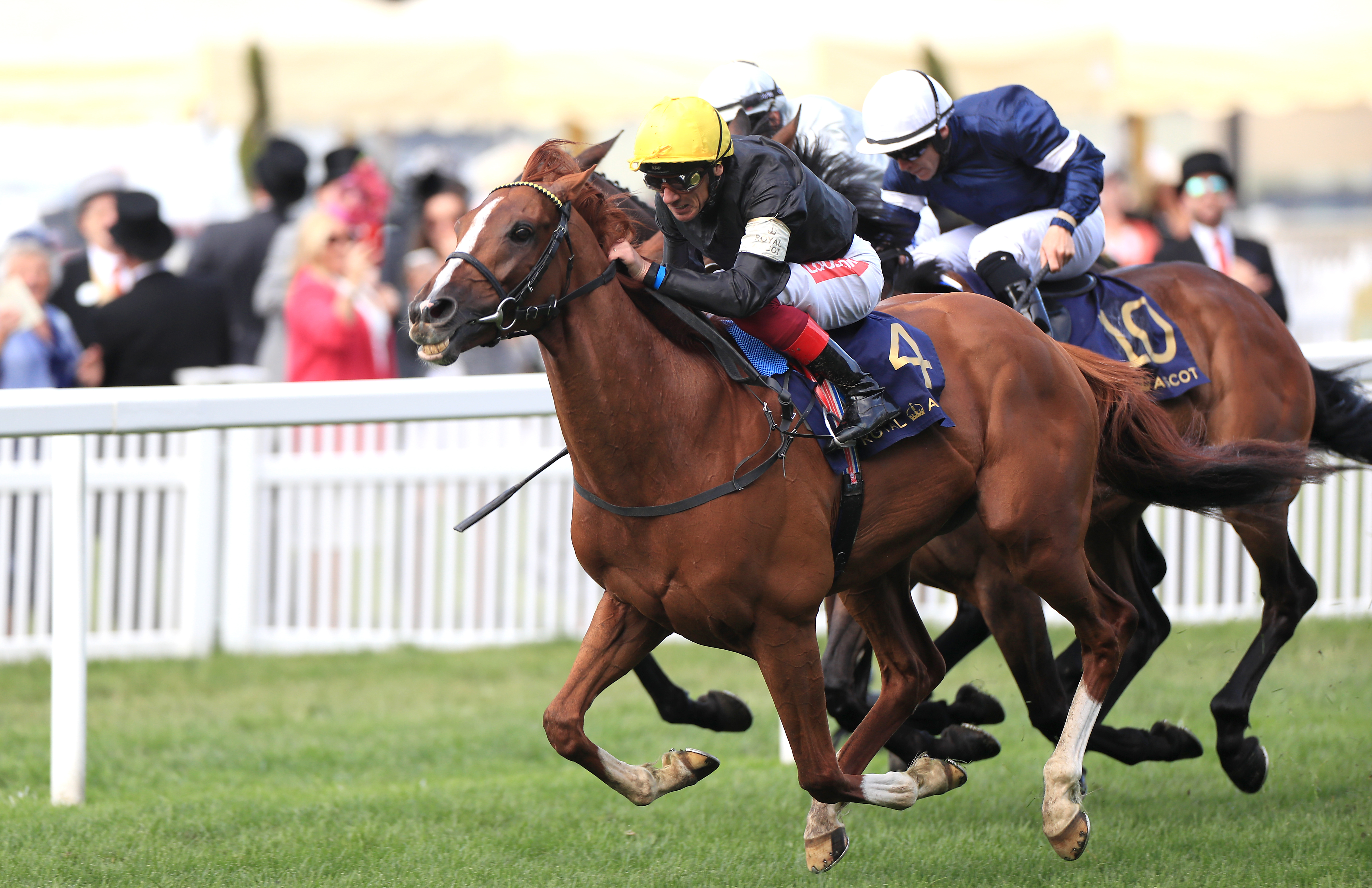 Stradivarius defended his Gold Cup title on a thrilling Thursday at Ascot