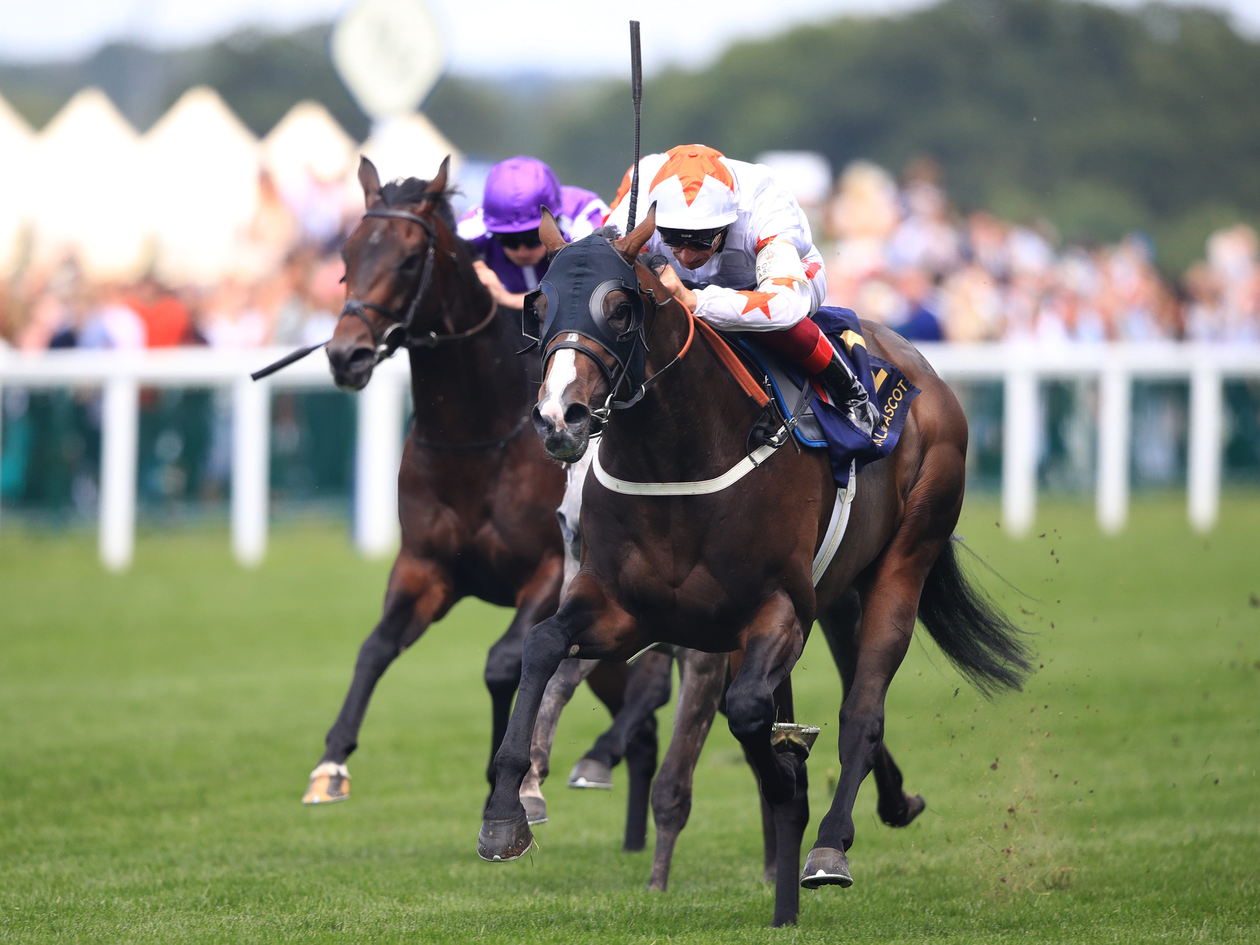 Advertise will aim to follow up his Ascot win (Adam Davy/PA)