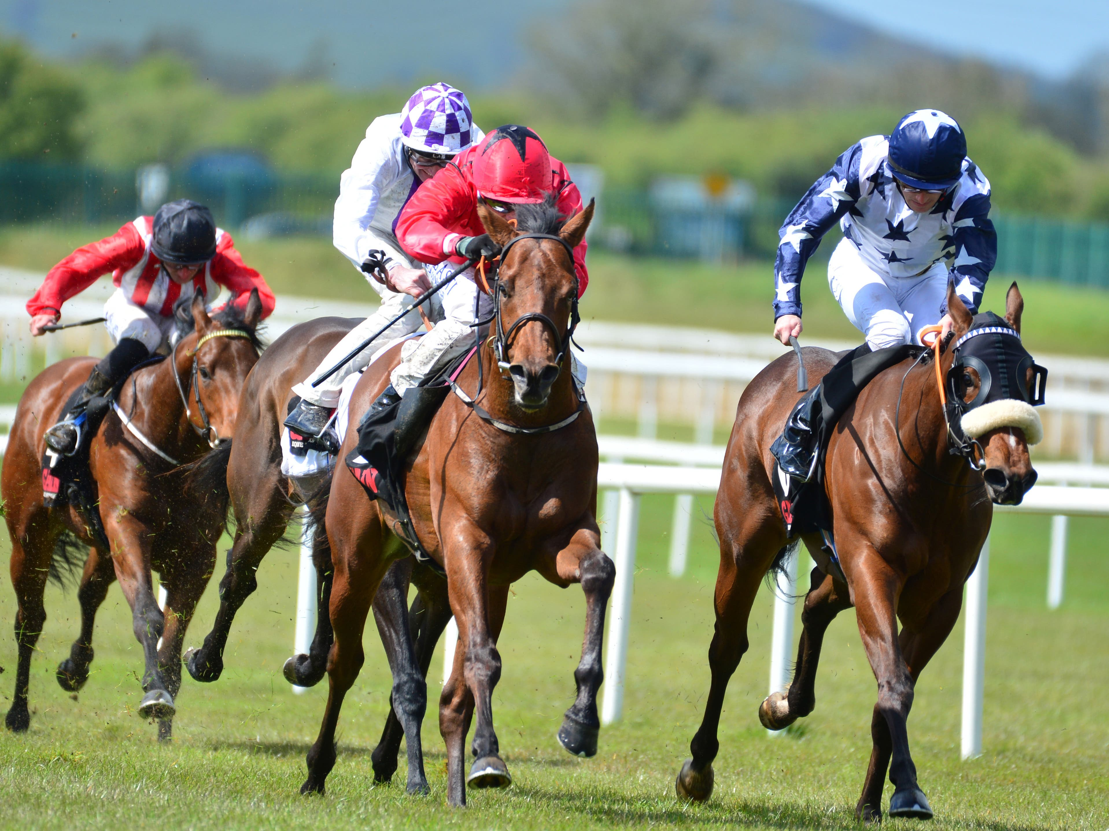 Castle Star ridden by jockey Chris Hayes (centre) wins the GAIN First Filer Stakes race at the Curragh (PA)