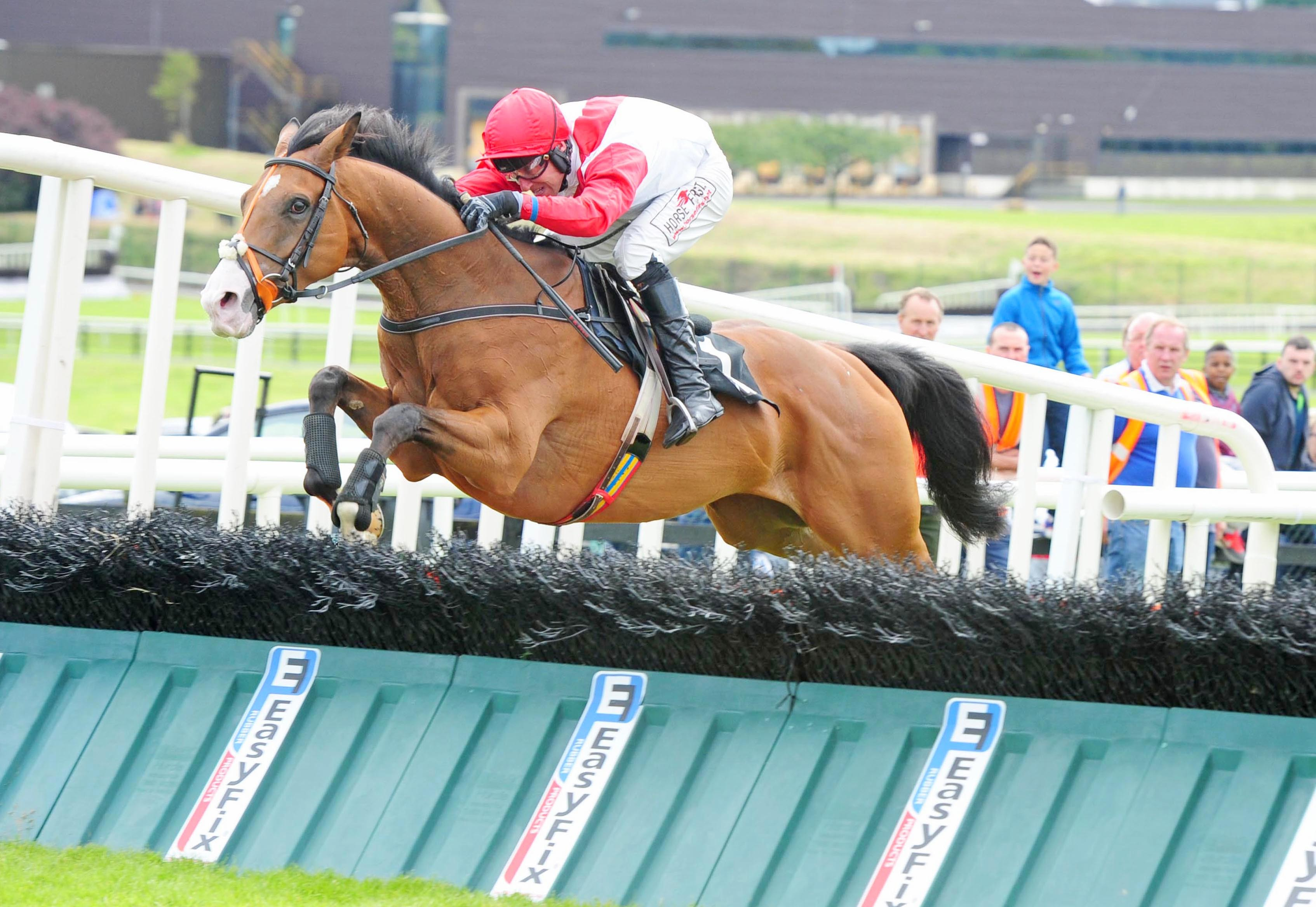 Sandymount Duke and Robbie Power in winning action at the Galway