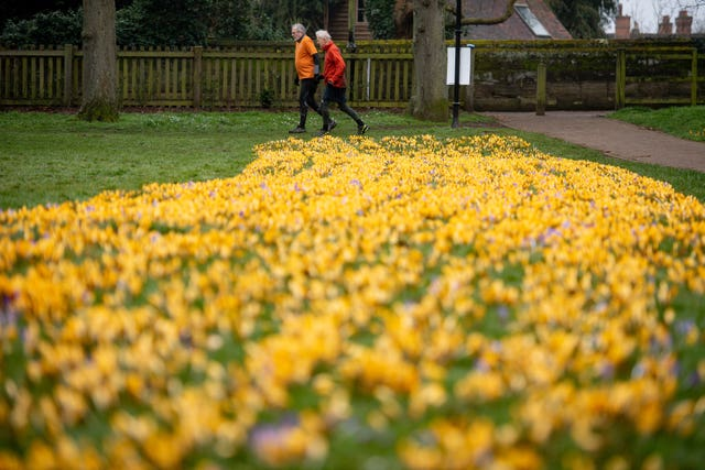 Men exercise by blooming flowers in St Nicholas' Park in Warwick