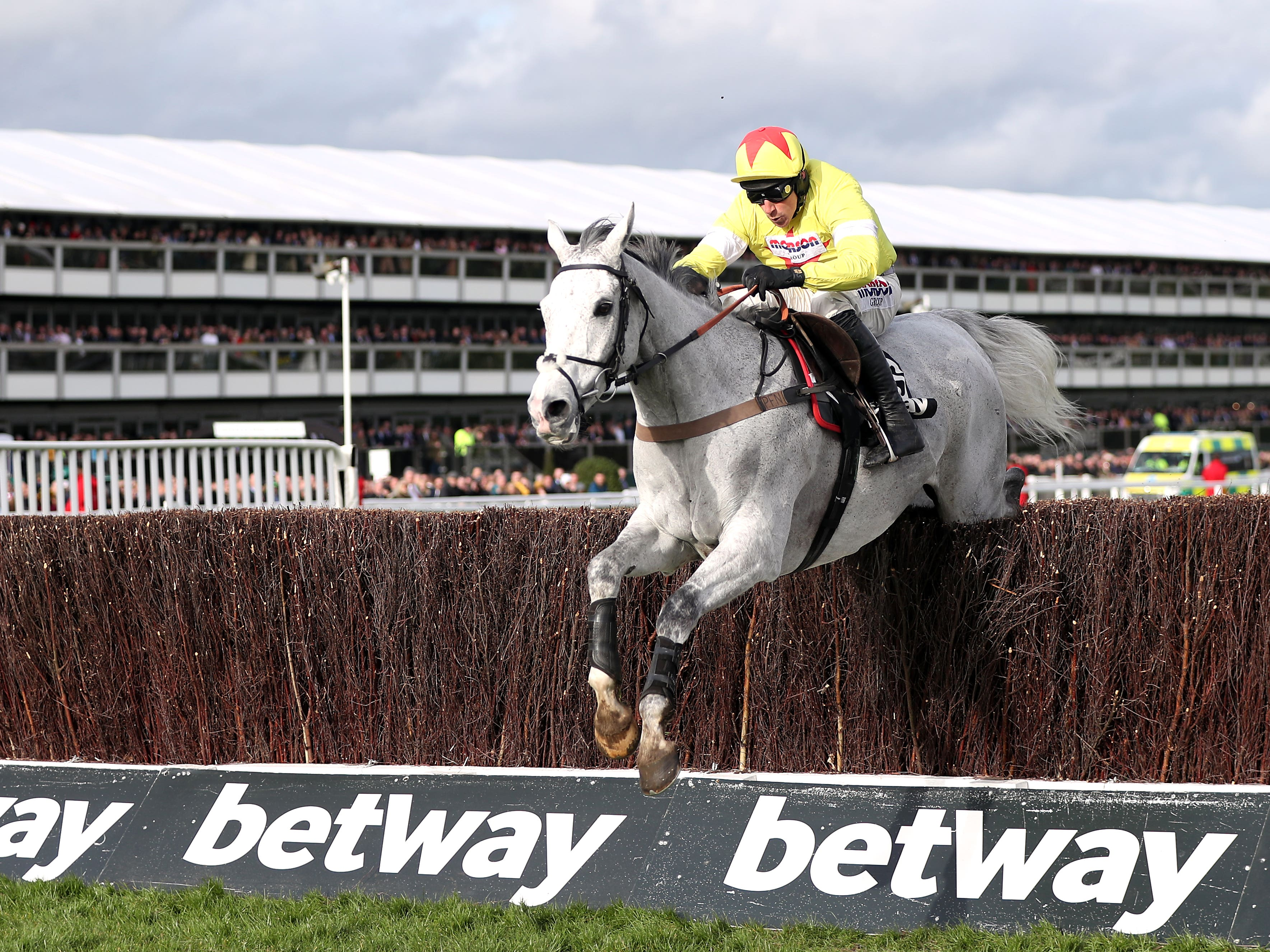 Politologue's next outing will be in the Queen Mother Champion Chase at Cheltenham which he won last year (Simon Cooper/PA)