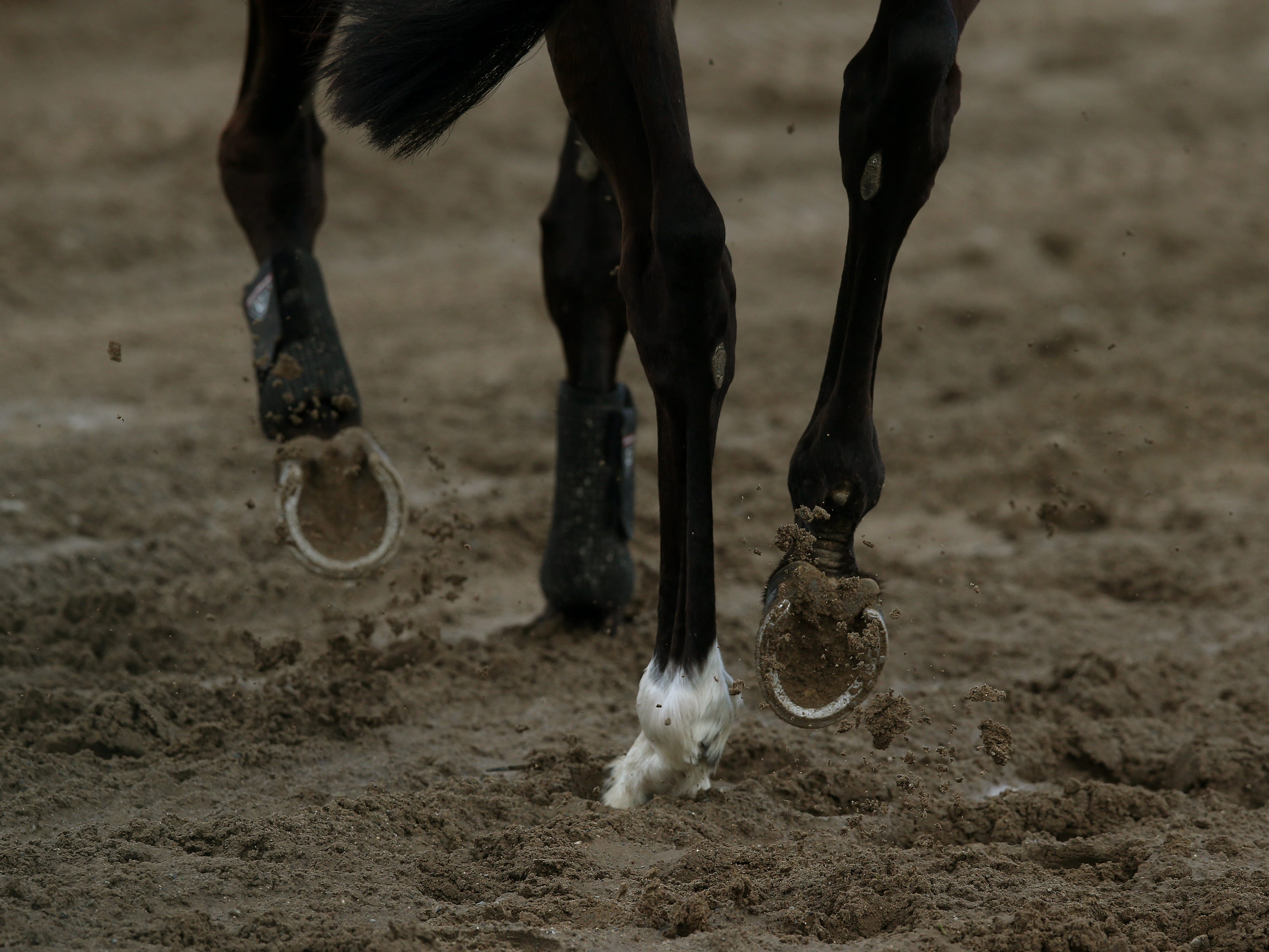 A general shot of A horse's hooves (Brian Lawless/PA)