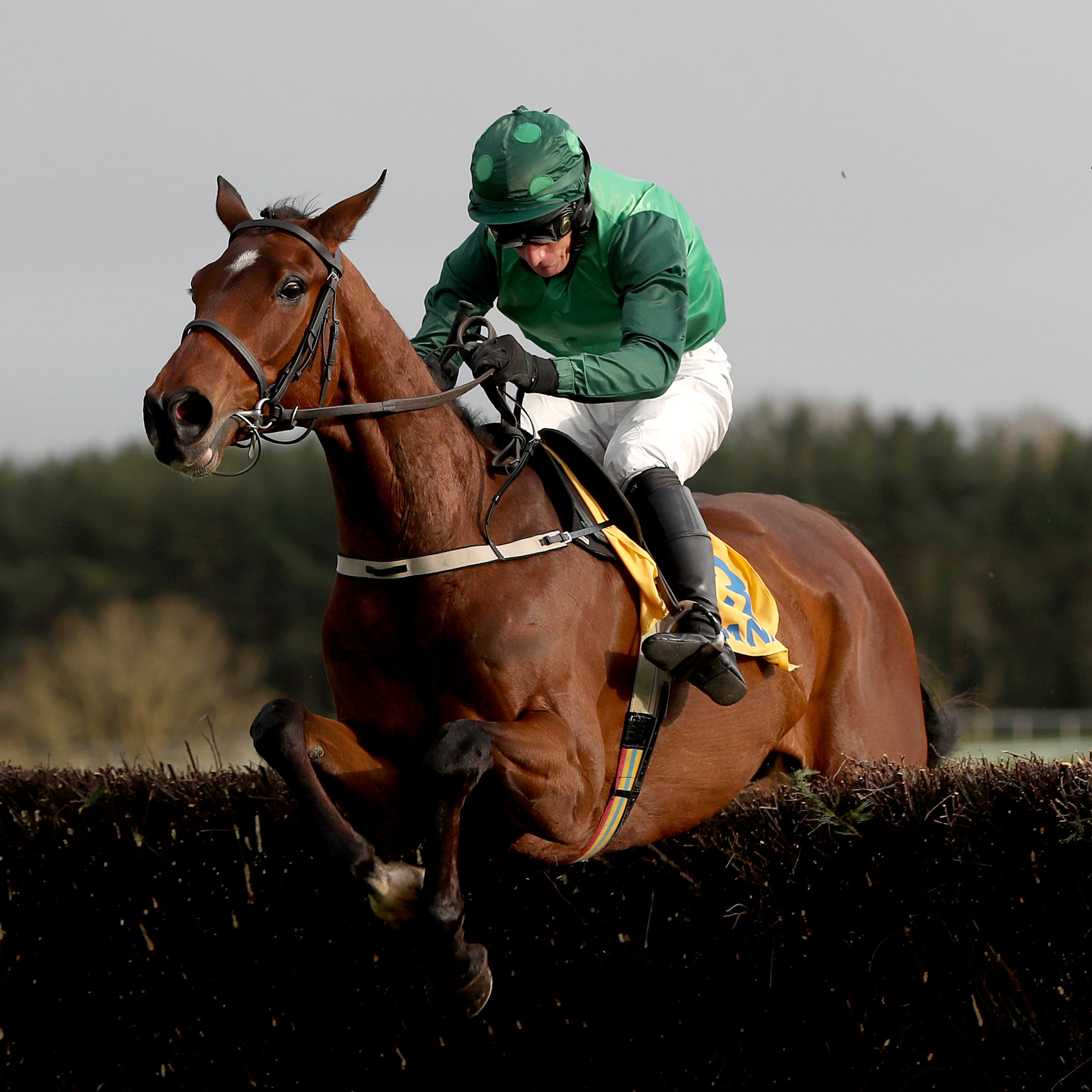 Footpad will hopefully be back in action soon