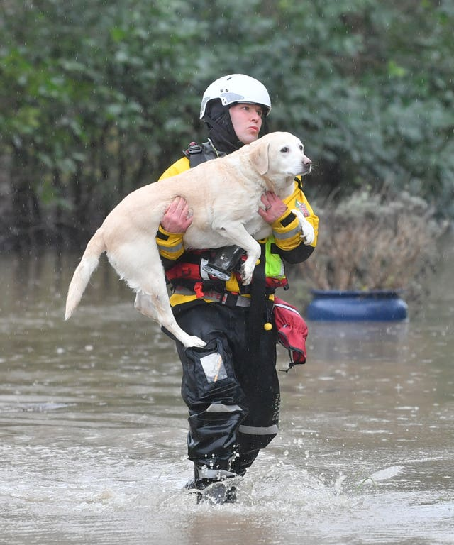 A firefighter carries a dog to safety