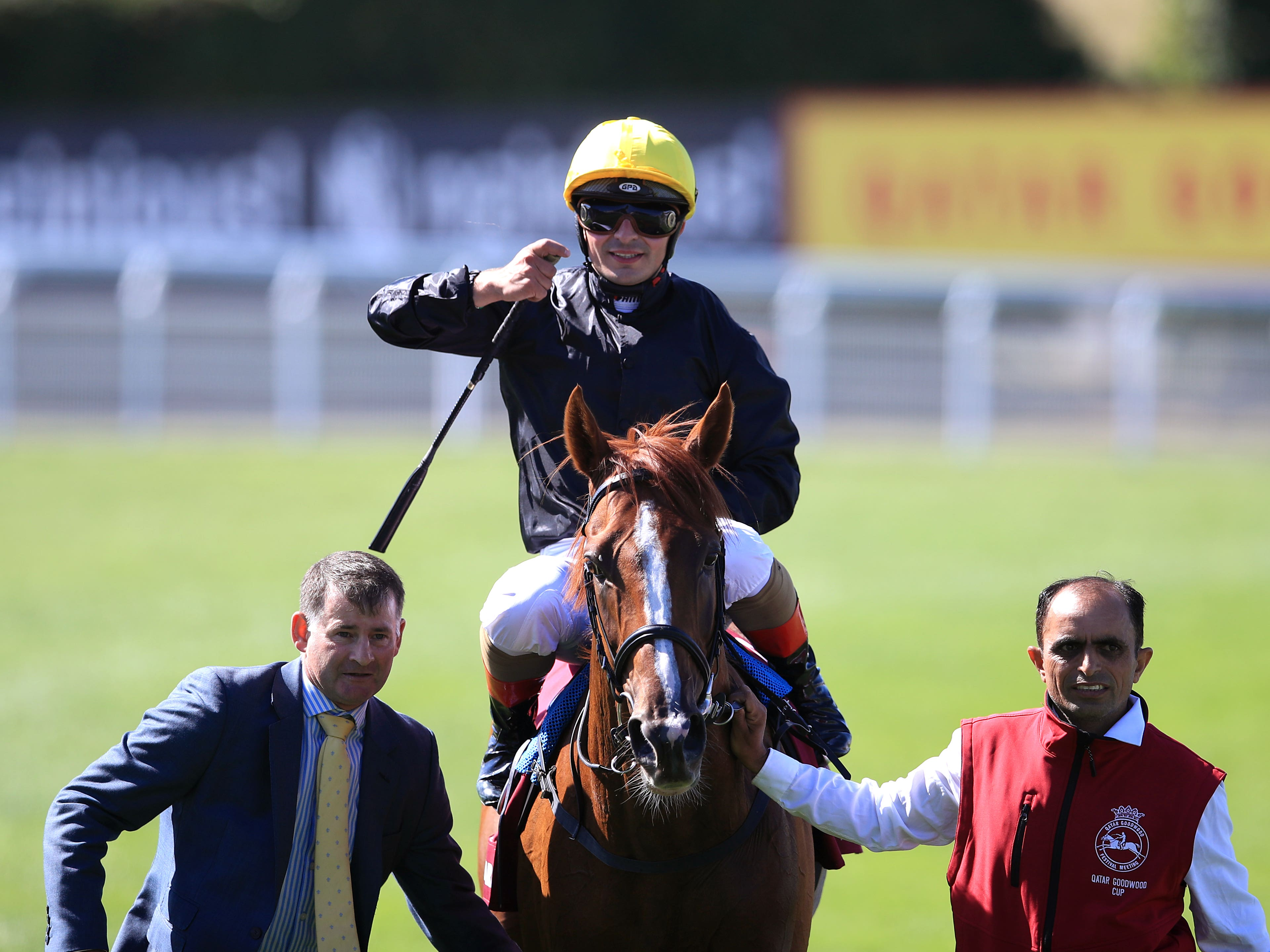 Stradivarius after winning his second Goodwood Cup (Adam Davy/PA)