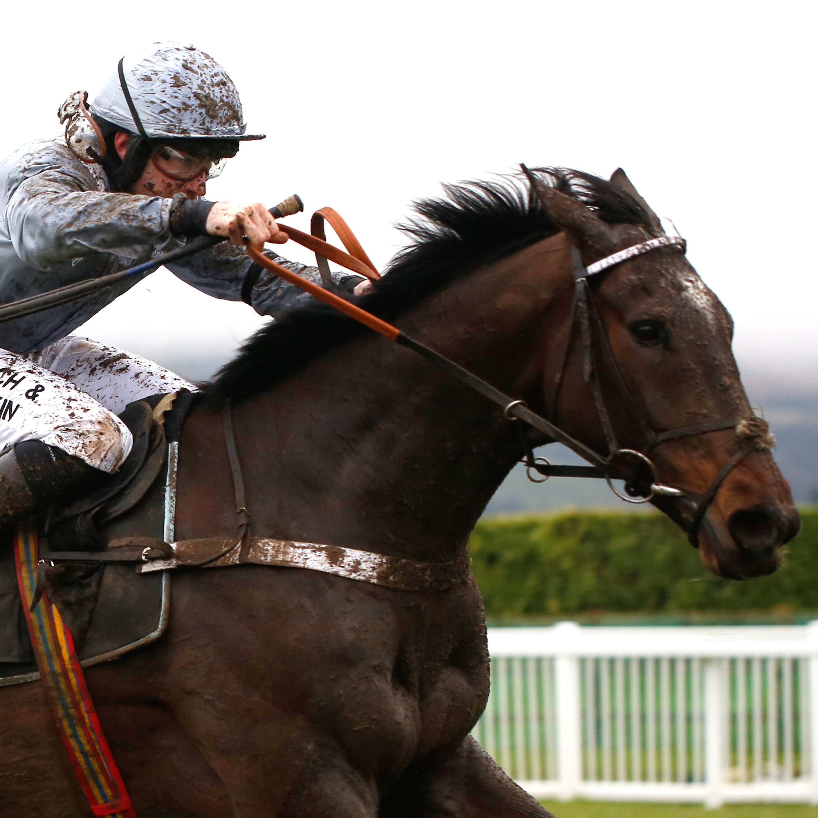 Santini is set to clash with Delta Work in the RSA Insurance Novices' Chase