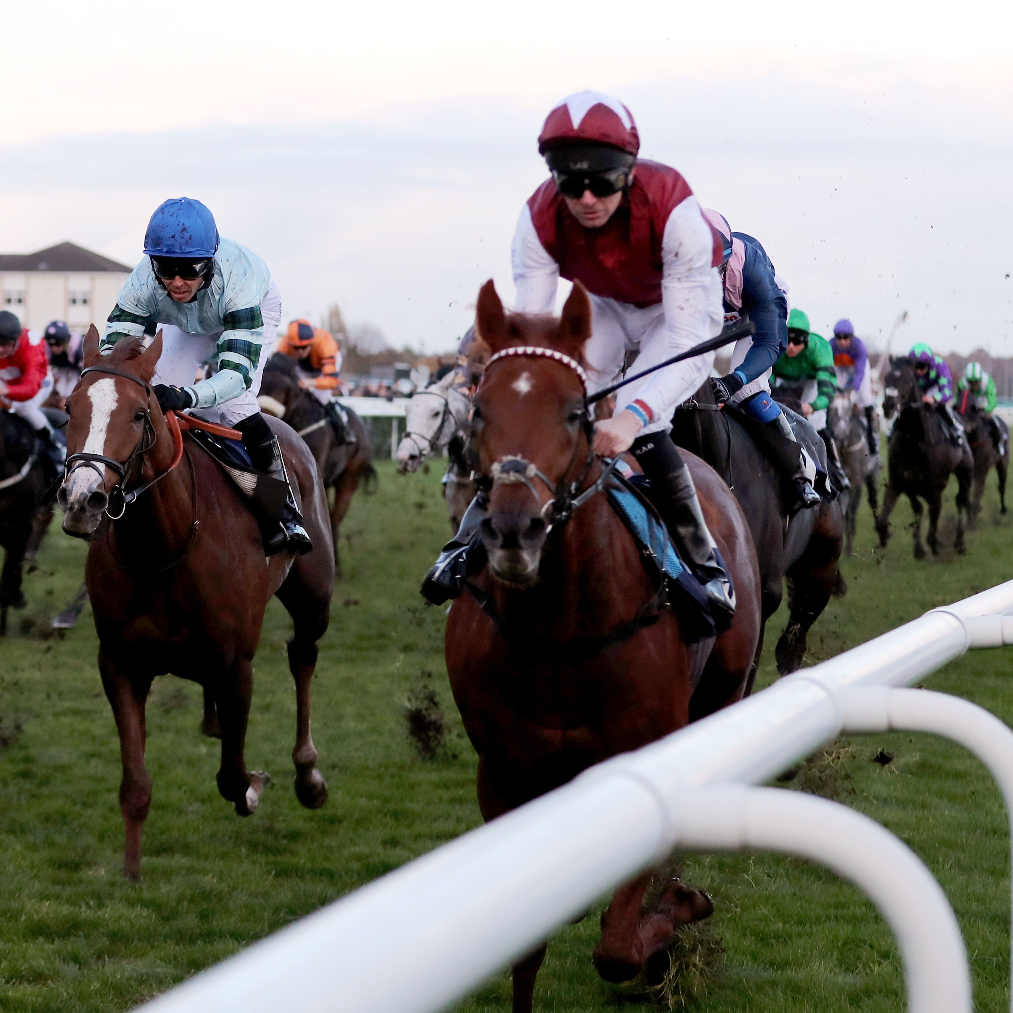 Royal Line made no mistake this year in the November Handicap