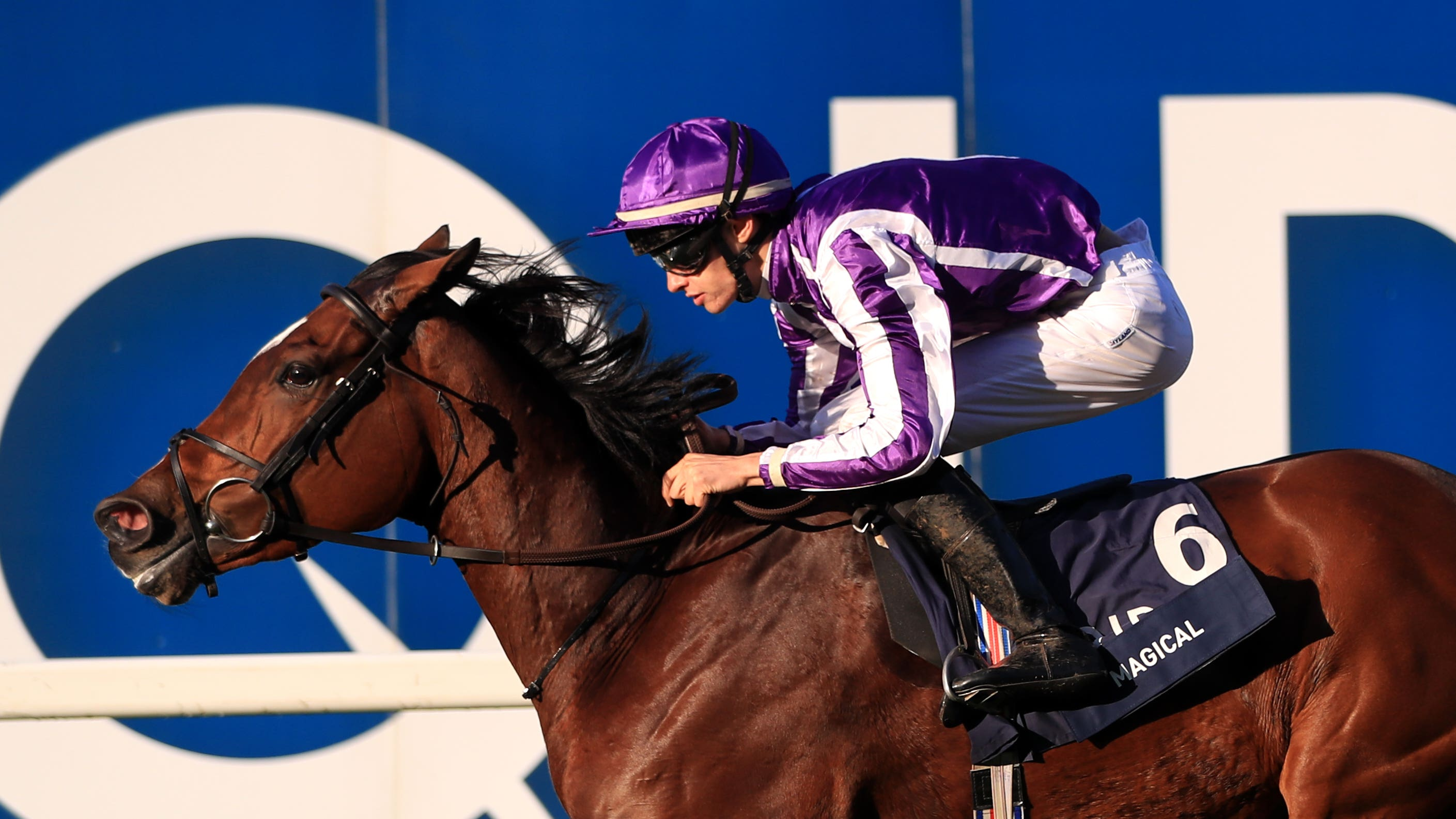 Aidan O Brien Hands Magical Filly Amp Mare Turf Mission At