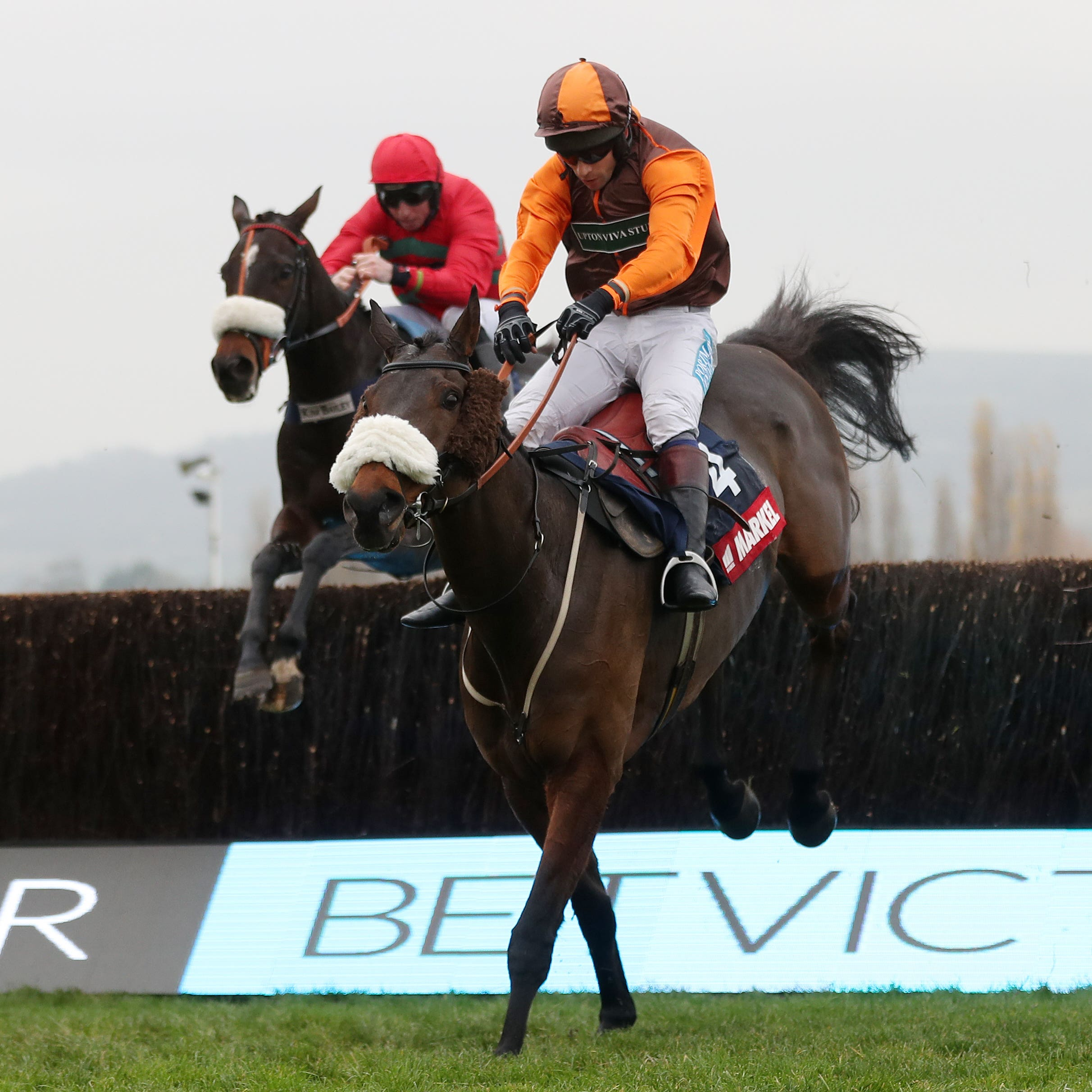 The Young Master could be switched to Ayr should he not get in the Grand National at Aintree
