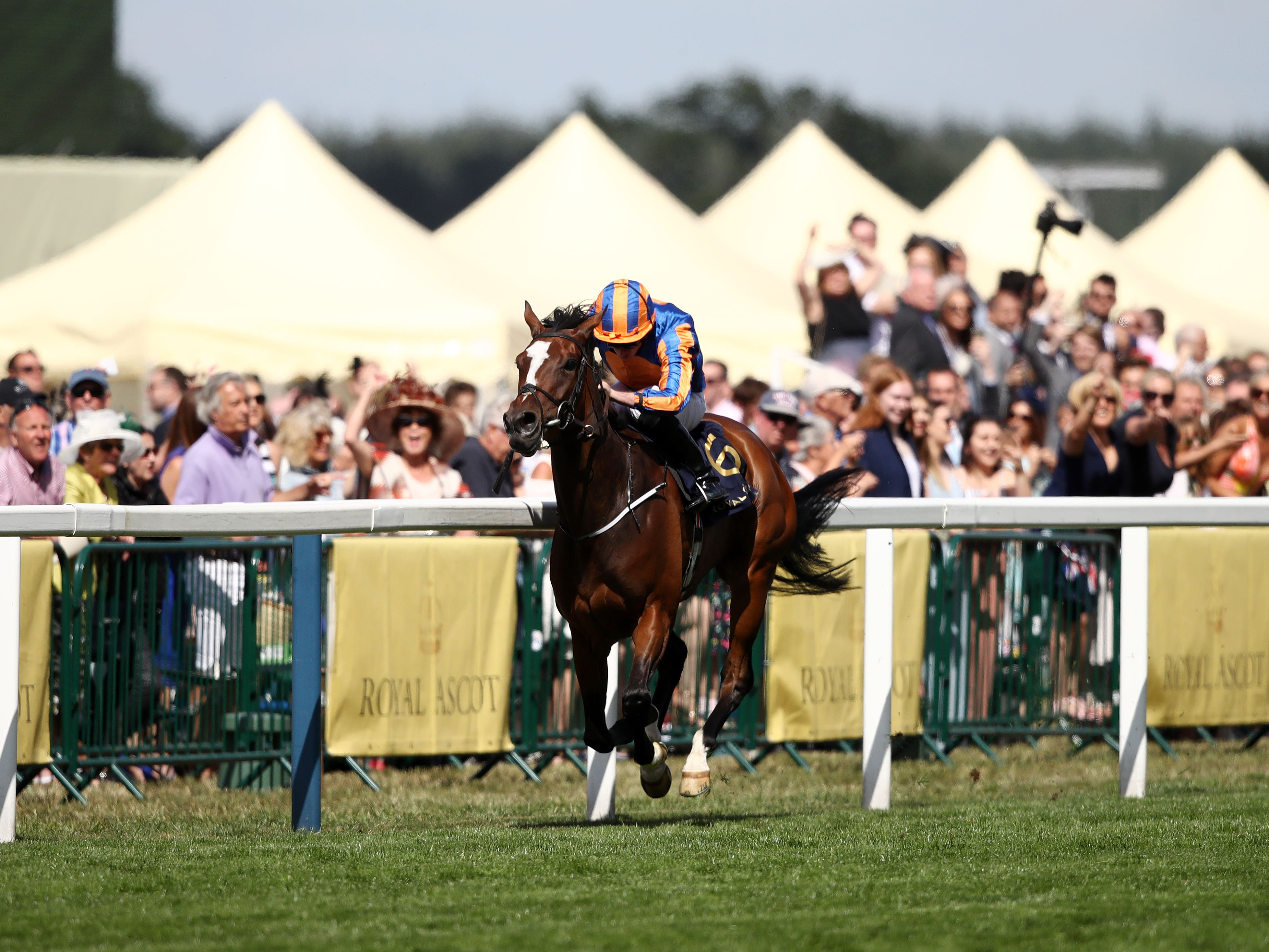 Magic Wand strolls to victory in the Ribblesdale at Ascot (John Walton/PA)