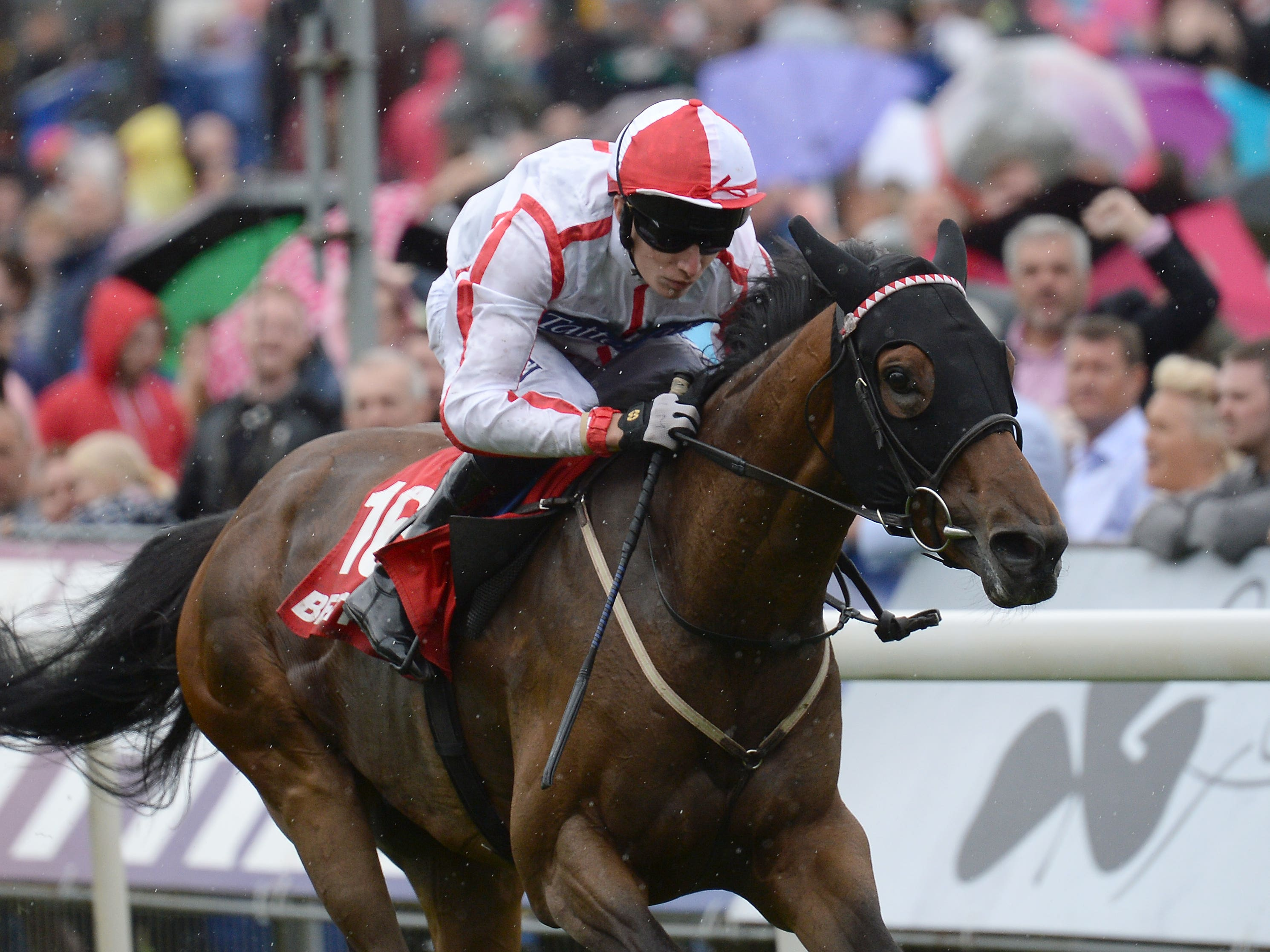 Scarlet Dragon has good York form in the book (Anna Gowthorpe/PA)