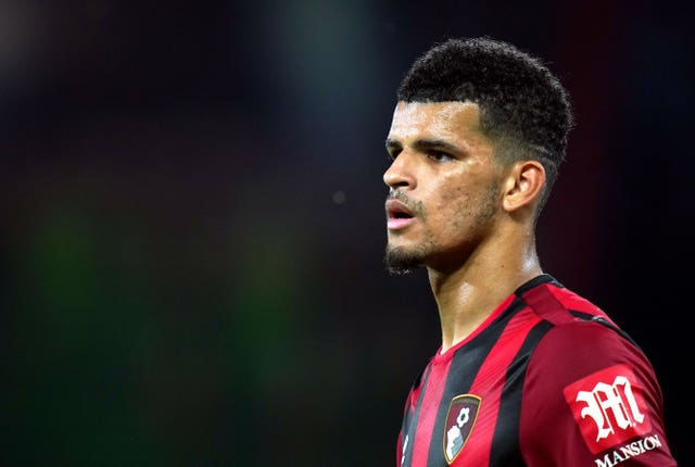 Dominic Solanke has managed just two Premier League goals for Bournemouth since a reported £19million move from Liverpool