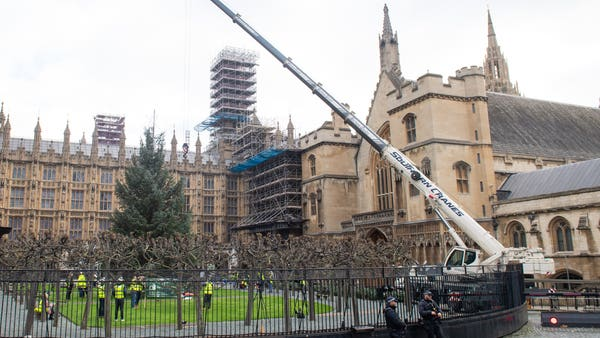 In Pictures: Parliament Christmas tree makes journey from forest to city